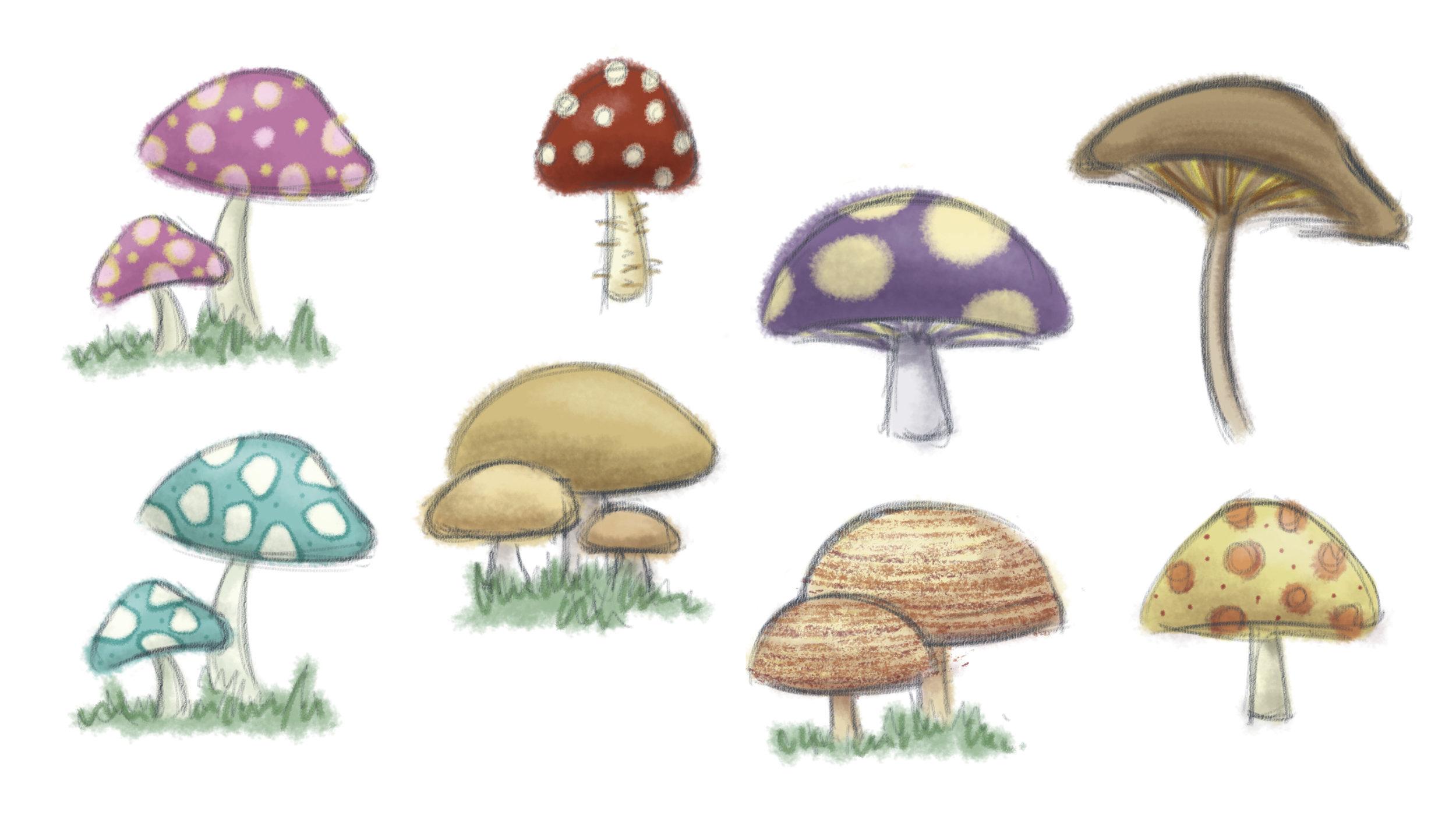 mushroomstudy copy.jpg