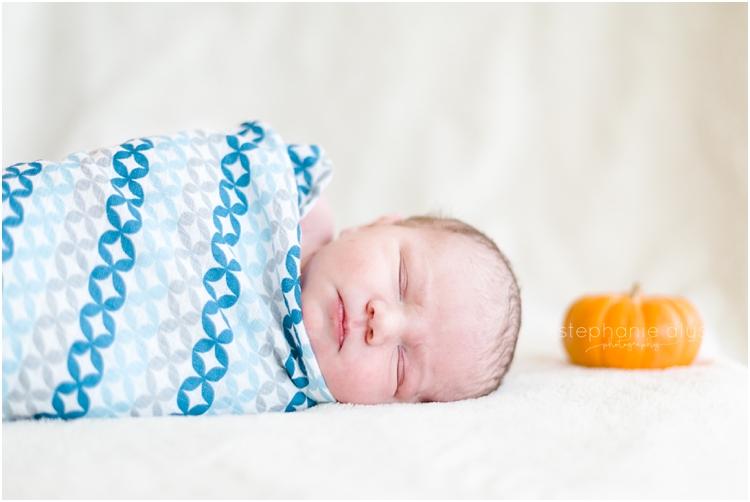 © Stephanie Alys Photography | Cypress Texas Lifestyle Newborn Photographer | Blog » 2016 Fall Packages
