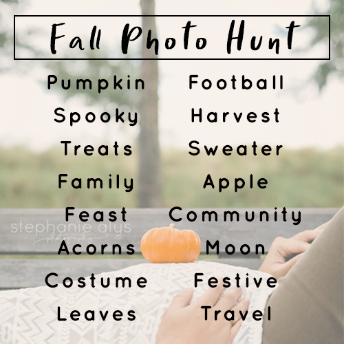 © 2017 Stephanie Alys Photography   Fall Photo Scavenger Hunt • Cypress, TX Family Photographer