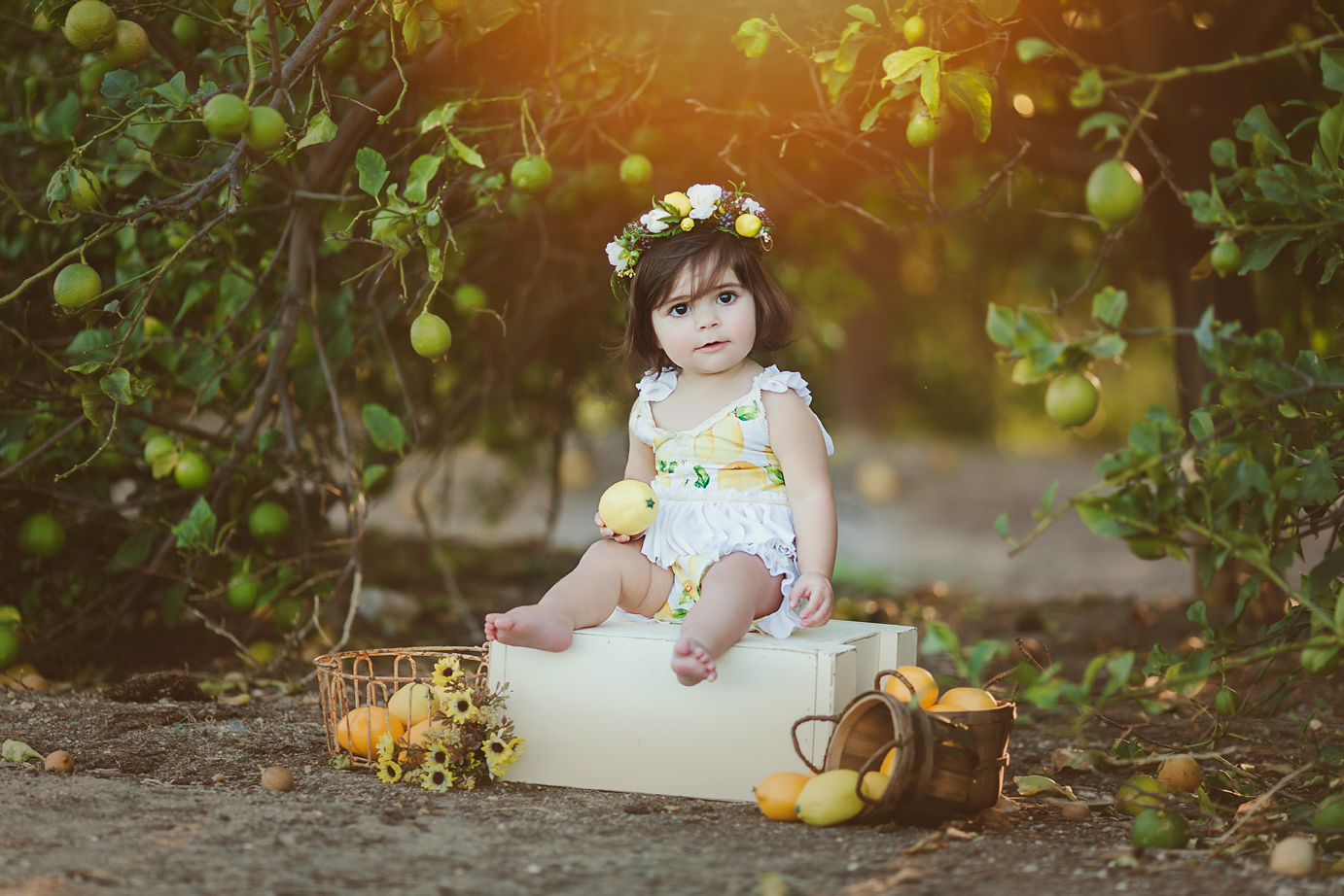 irvine-orange-county-baby-photography-studio-outdoor-fine-art-lemon-groves-sunset.jpg
