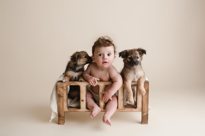orange-county-baby-photography-studio-baby-and-puppies-adorable.jpg