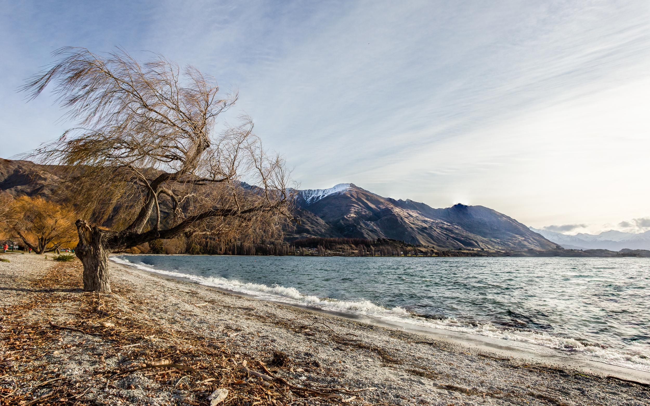 LakeWanakNewZealand