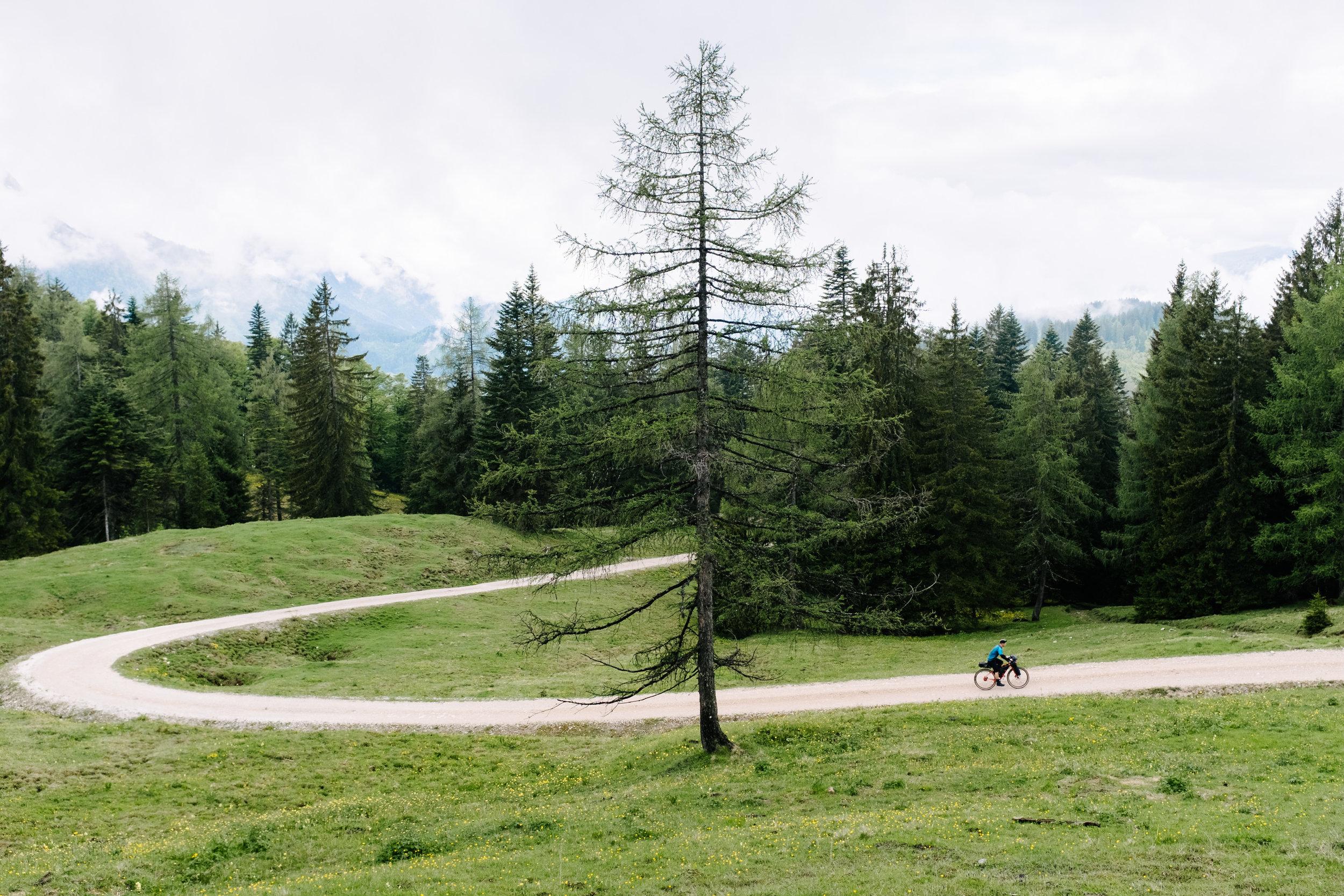 BenReadPhotography_Bikepacking-10.jpg