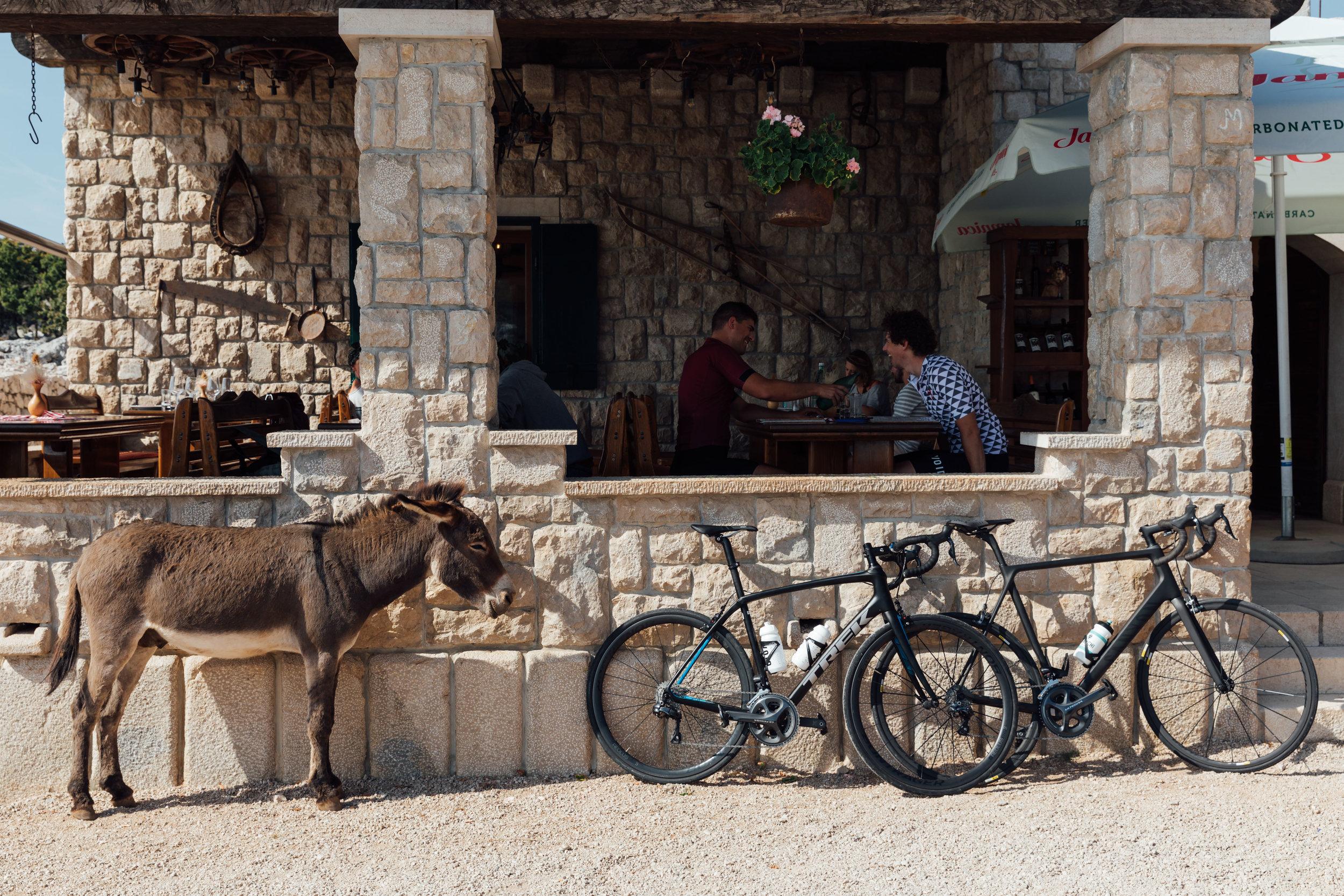 BenReadPhotography_Cyclist_BigRide_Croatia-78.jpg