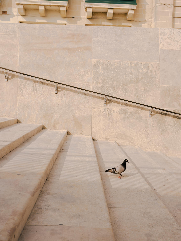 BenReadPhotography_Ink_Wizz_MaltaClimbing-197.jpg