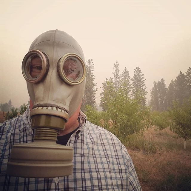 They say the air quality here in eastern Washington is very unhealthy today. Not sure what they're talking about, I'm breathing just fine.  #wildfiresmoke
