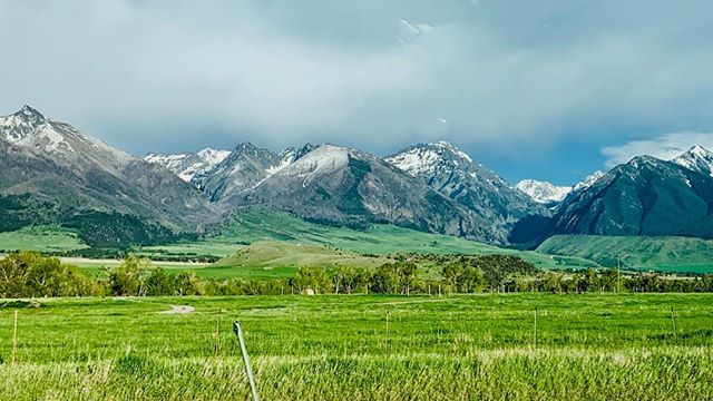 Montana in the late spring seems like it copied off of Heaven's homework paper. #roadtrip #montana #springtime #mountains #greenery