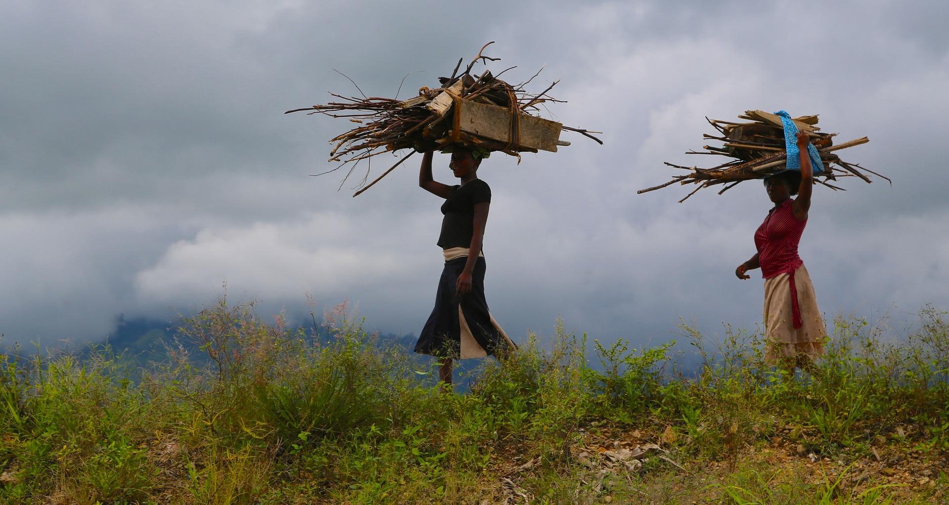 Using community monitoring to decrease deforestation in Uganda -