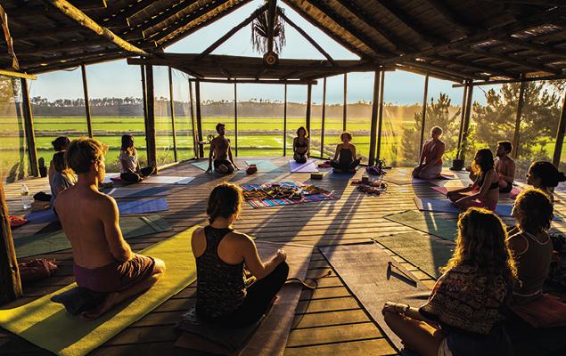 YogaShala-ConVida-2017-010.jpg