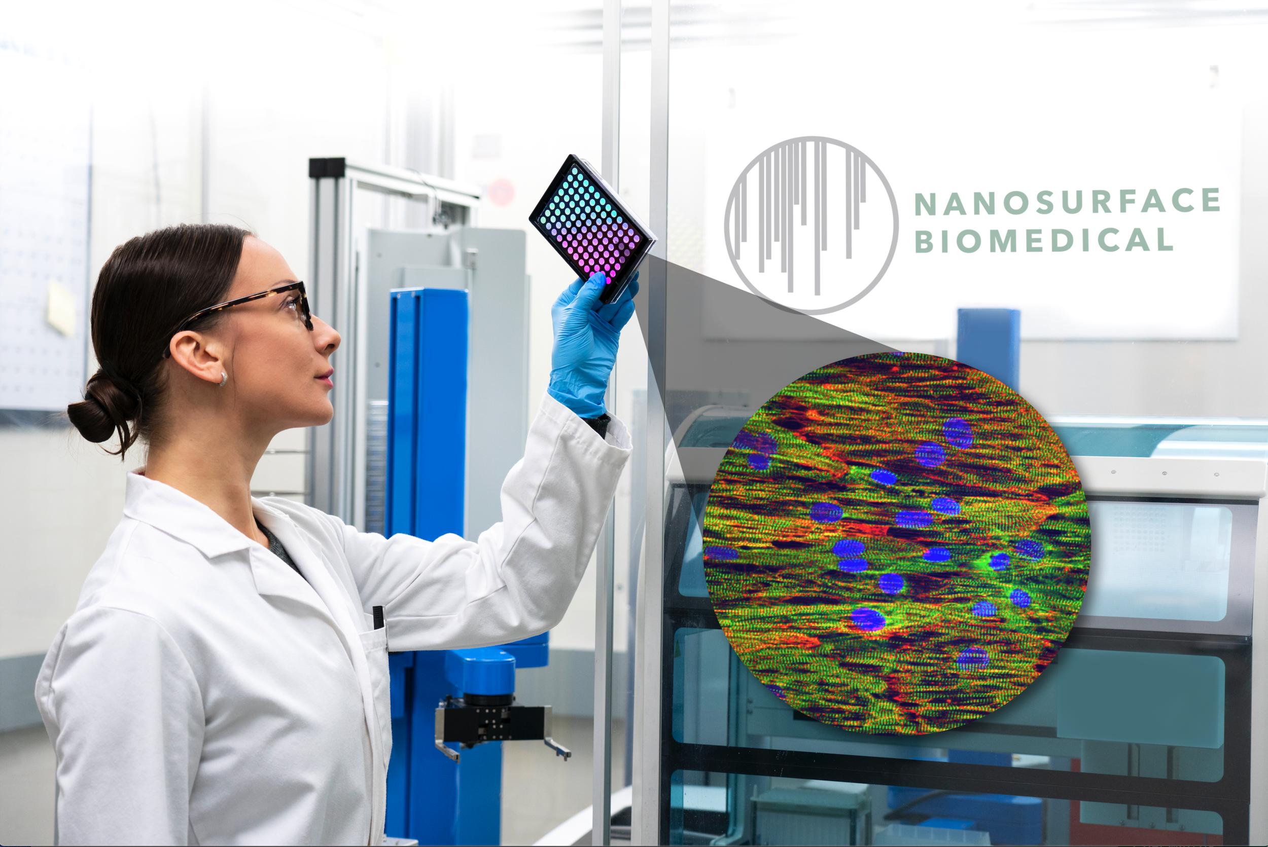 NanoSurface Carina platform structurally matured iPSC cardiomyocytes