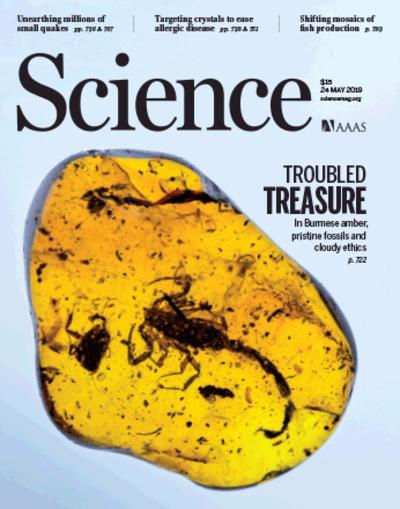 Science Magazine Cover - eCyte 6 Feature.jpeg