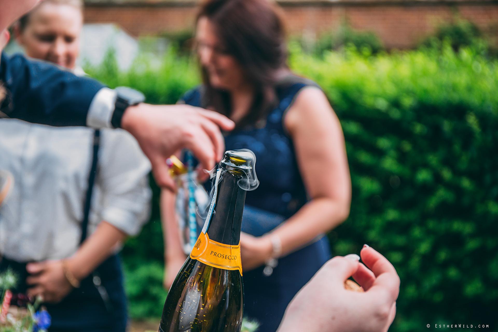 Norfolk_Wedding_Photographer_Mannington_Hall_Country_Esther_Wild_0117.jpg