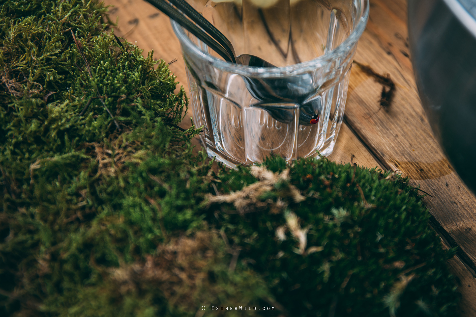 Norfolk_Wedding_Photographer_Mannington_Hall_Country_Esther_Wild_0129.jpg