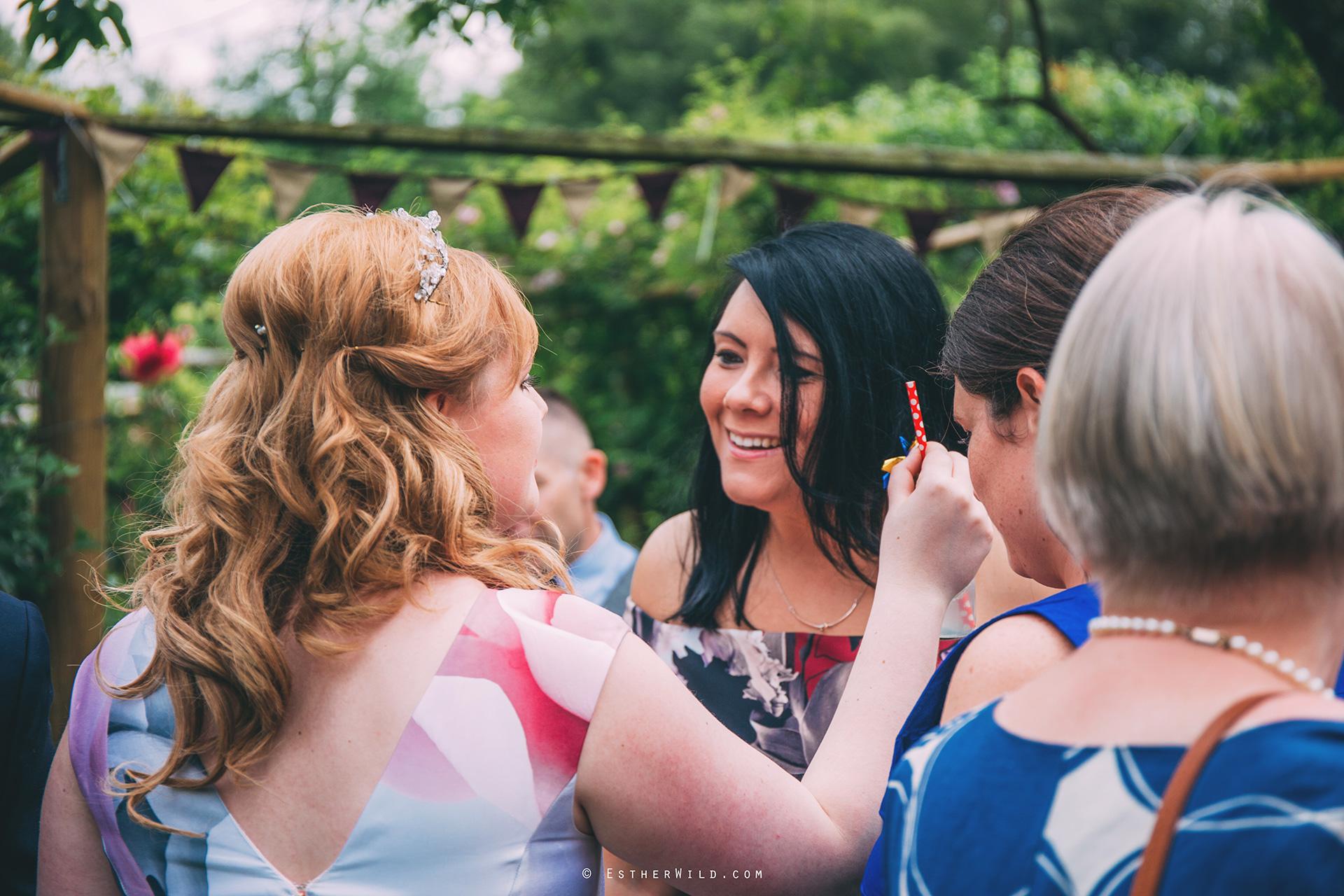 Norfolk_Wedding_Photographer_Mannington_Hall_Country_Esther_Wild_0378.jpg