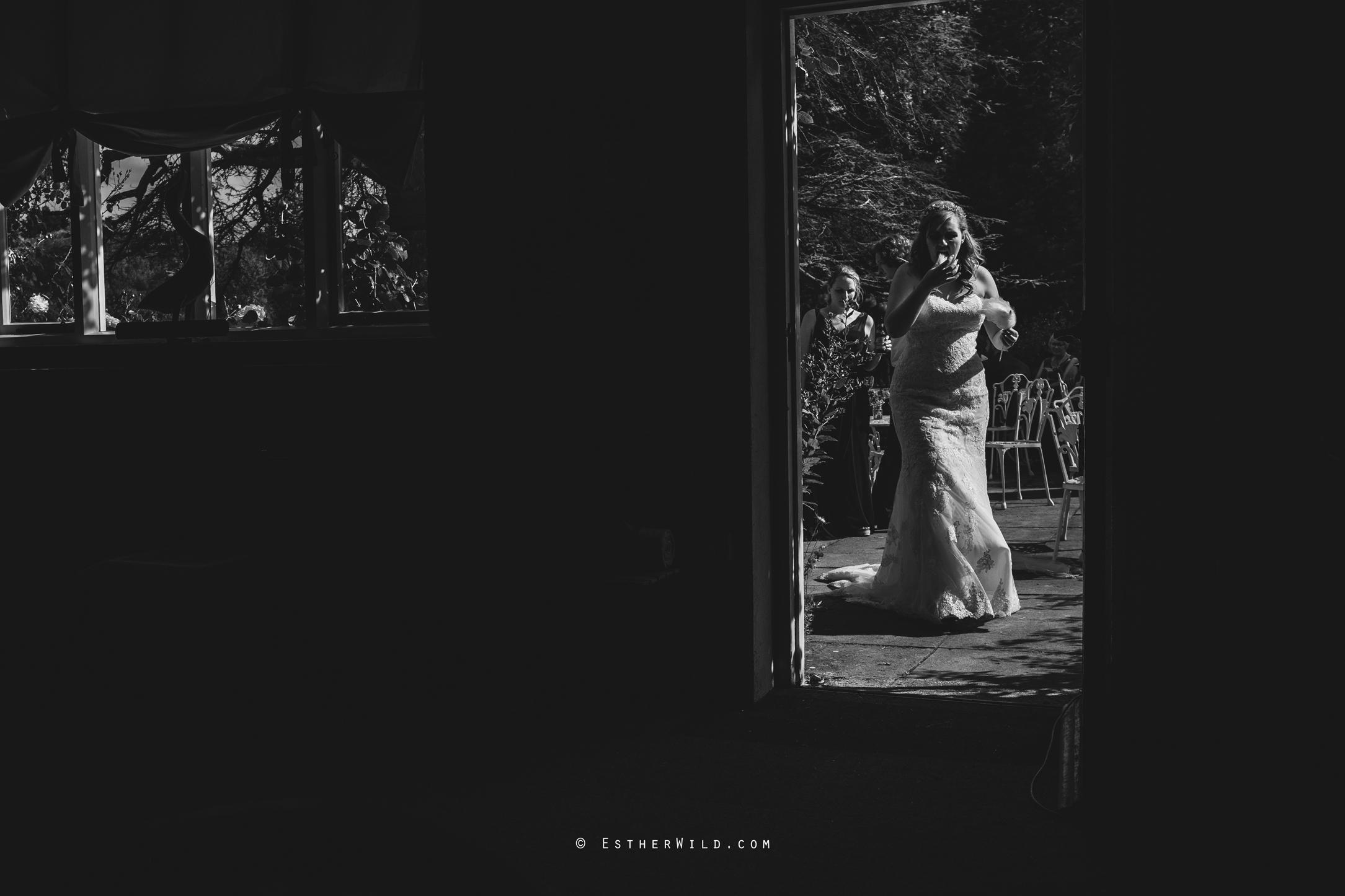 Norfolk_Wedding_Photographer_Mannington_Hall_Country_Esther_Wild_1780-1.jpg