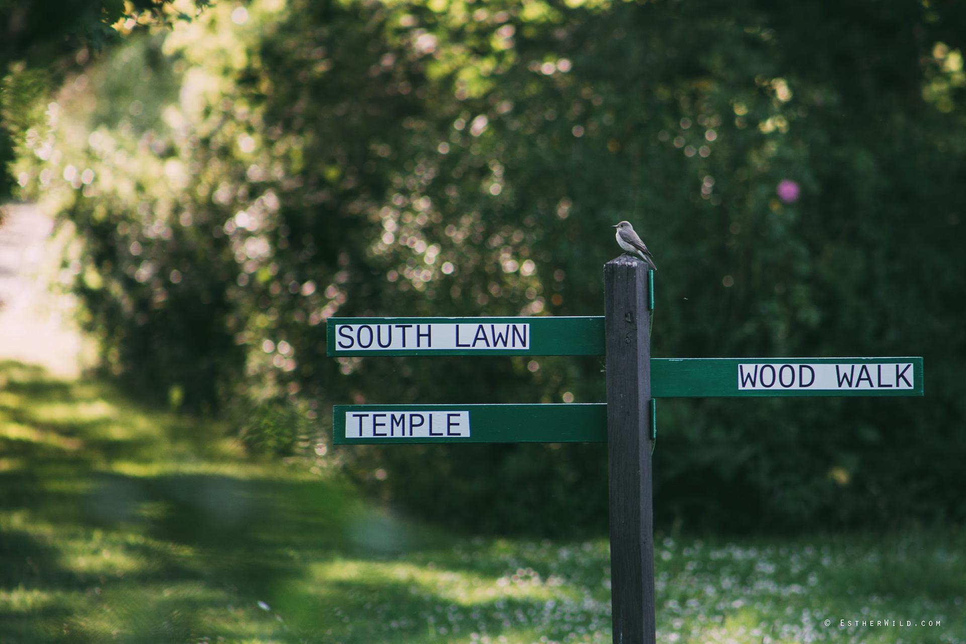 Norfolk_Wedding_Photographer_Mannington_Hall_Country_Esther_Wild_2051.jpg