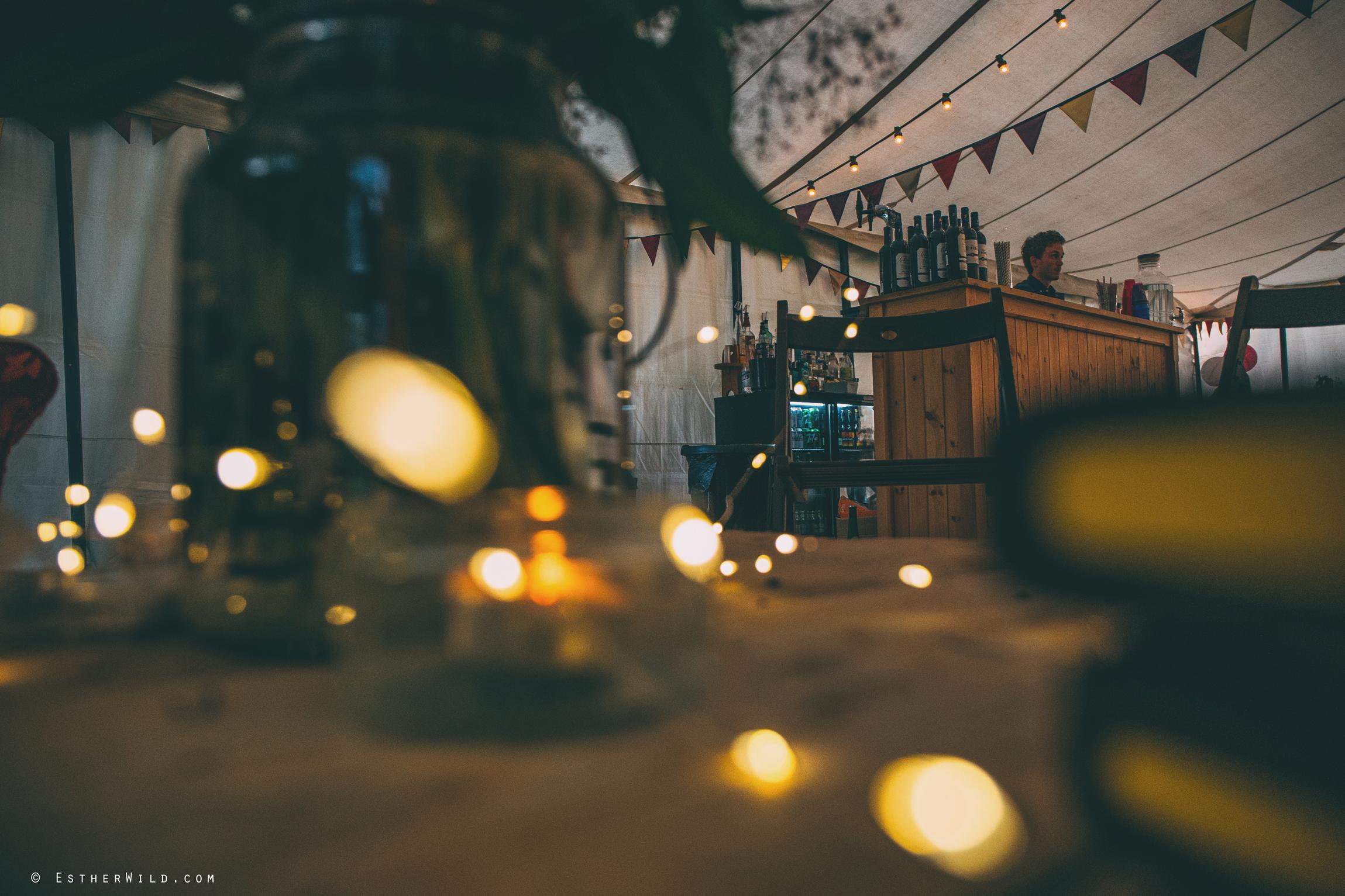 Norfolk_Wedding_Photographer_Mannington_Hall_Country_Esther_Wild_2422.jpg