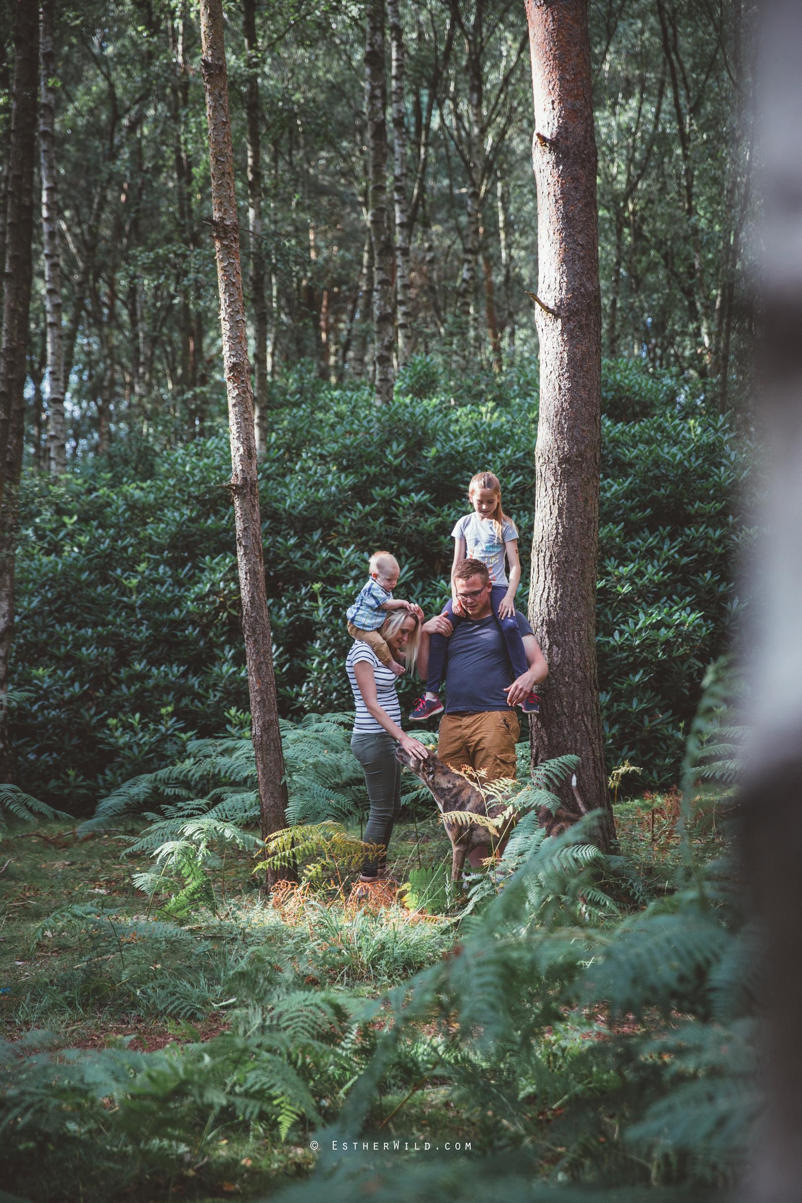 Norfolk_Wedding_PhotographerIMG_2280.jpg