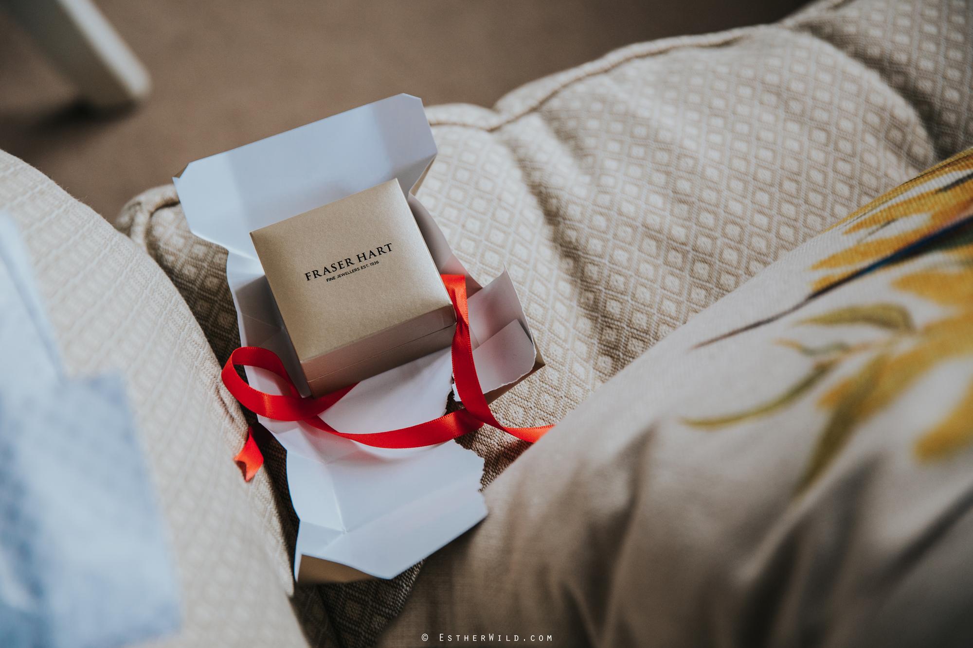 Reading_Room_Weddings_Alby_Norwich_Photographer_Esther_Wild_IMG_0225.jpg