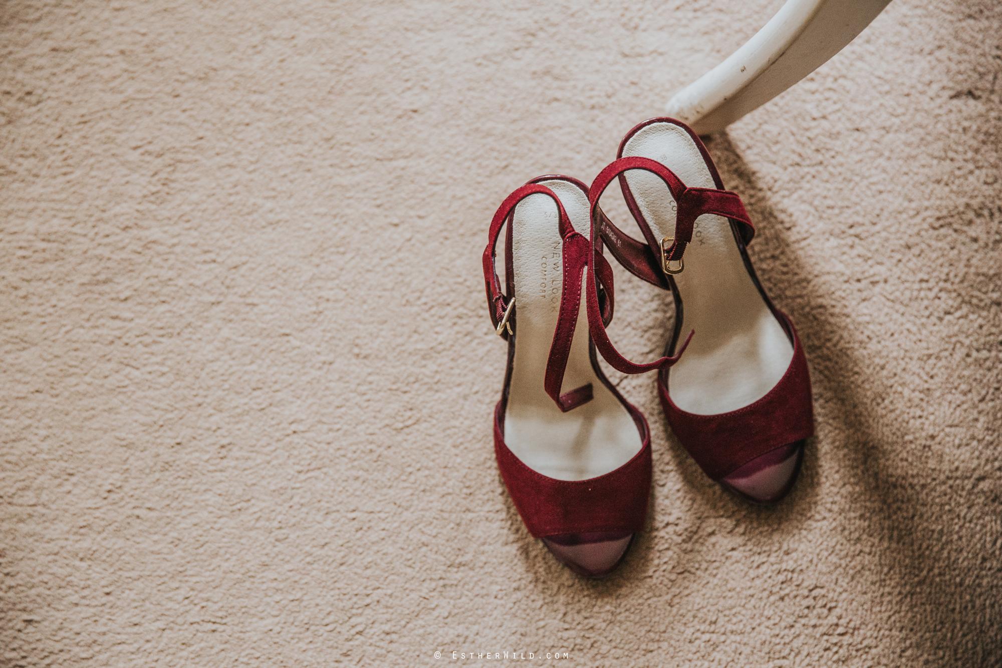 Reading_Room_Weddings_Alby_Norwich_Photographer_Esther_Wild_IMG_0331.jpg