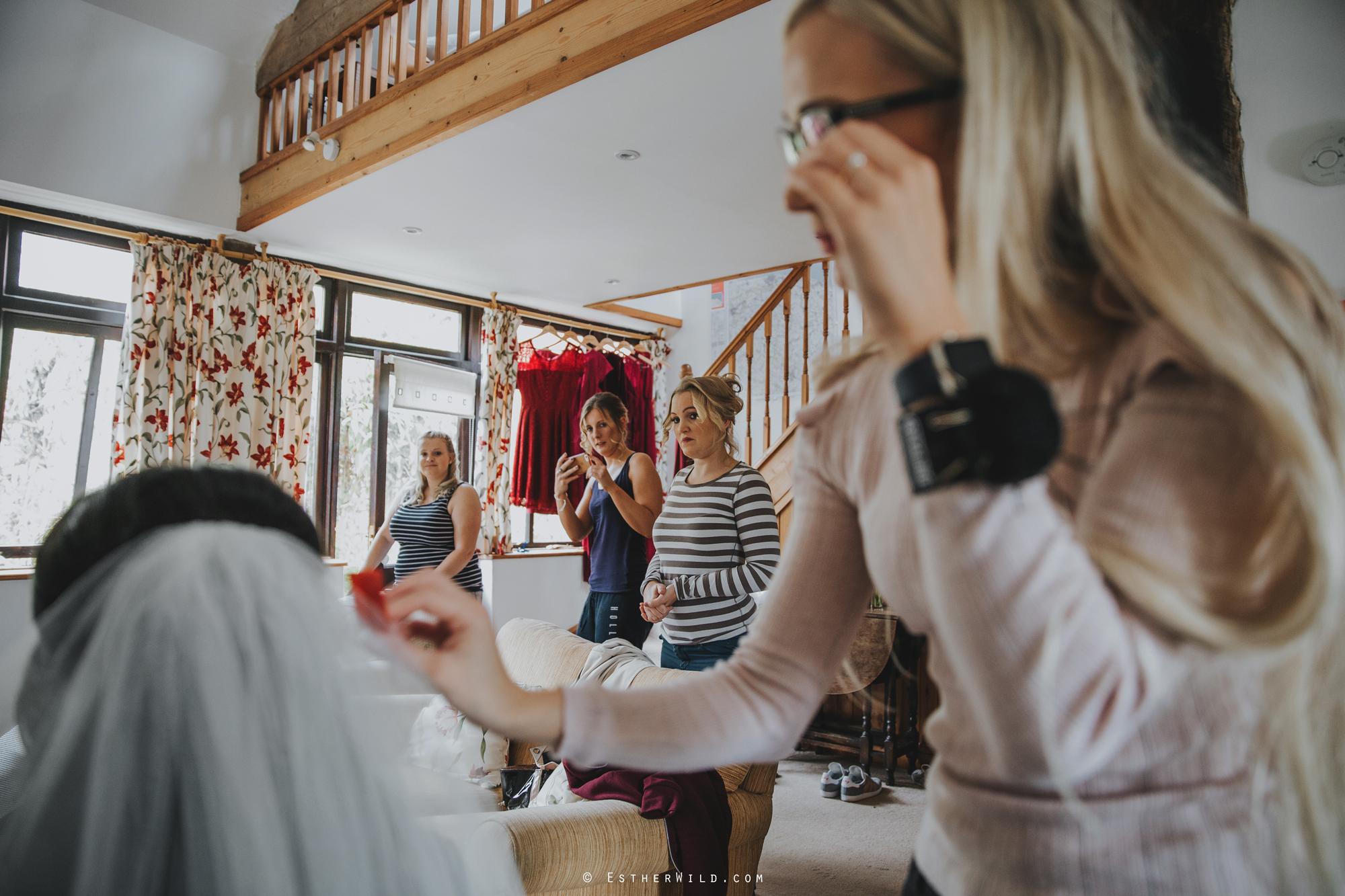 Reading_Room_Weddings_Alby_Norwich_Photographer_Esther_Wild_IMG_0343.jpg