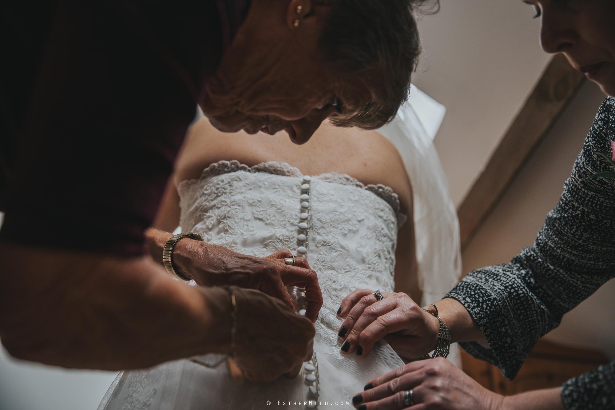 Reading_Room_Weddings_Alby_Norwich_Photographer_Esther_Wild_IMG_0481.jpg