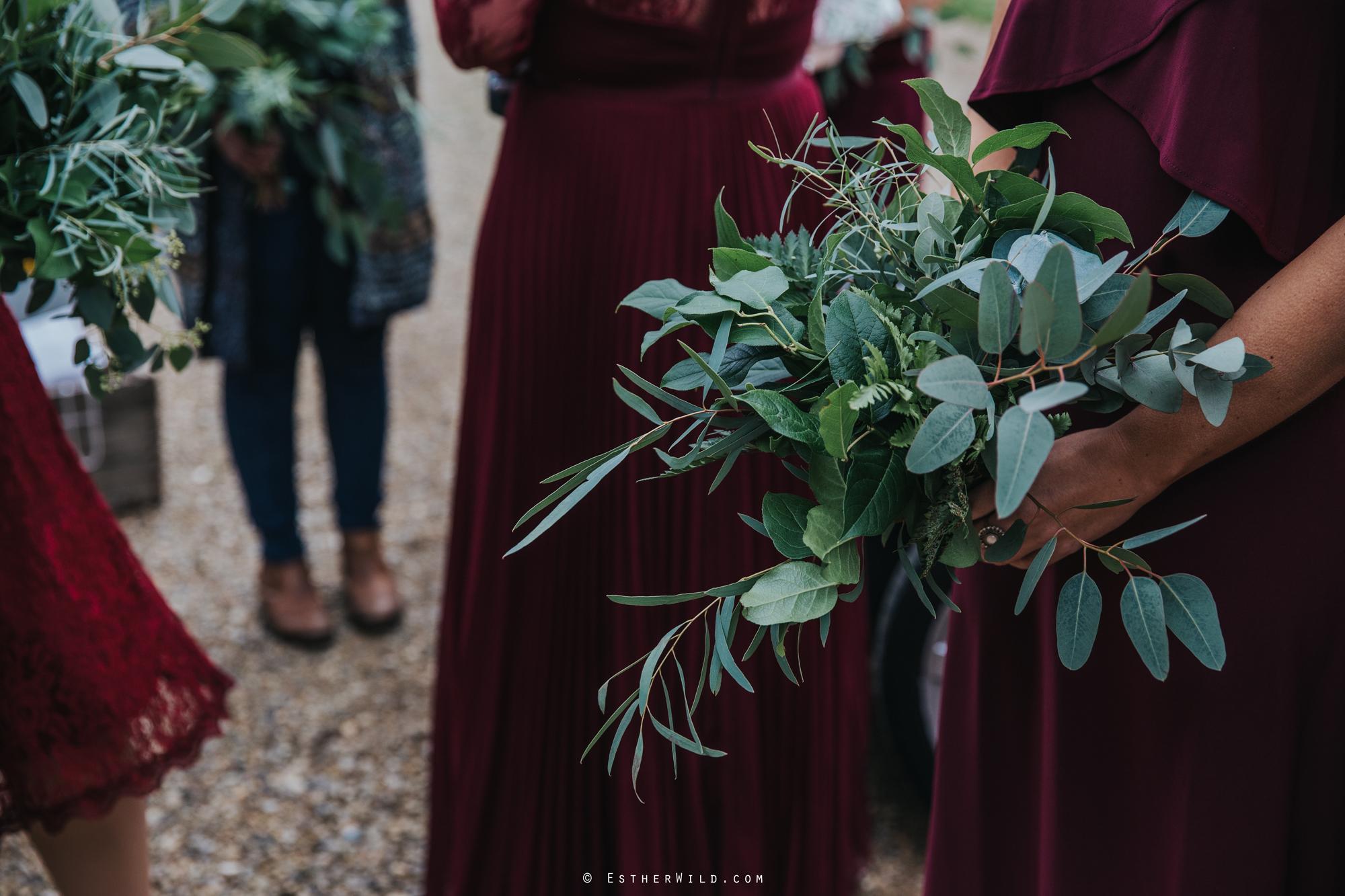 Reading_Room_Weddings_Alby_Norwich_Photographer_Esther_Wild_IMG_0700.jpg