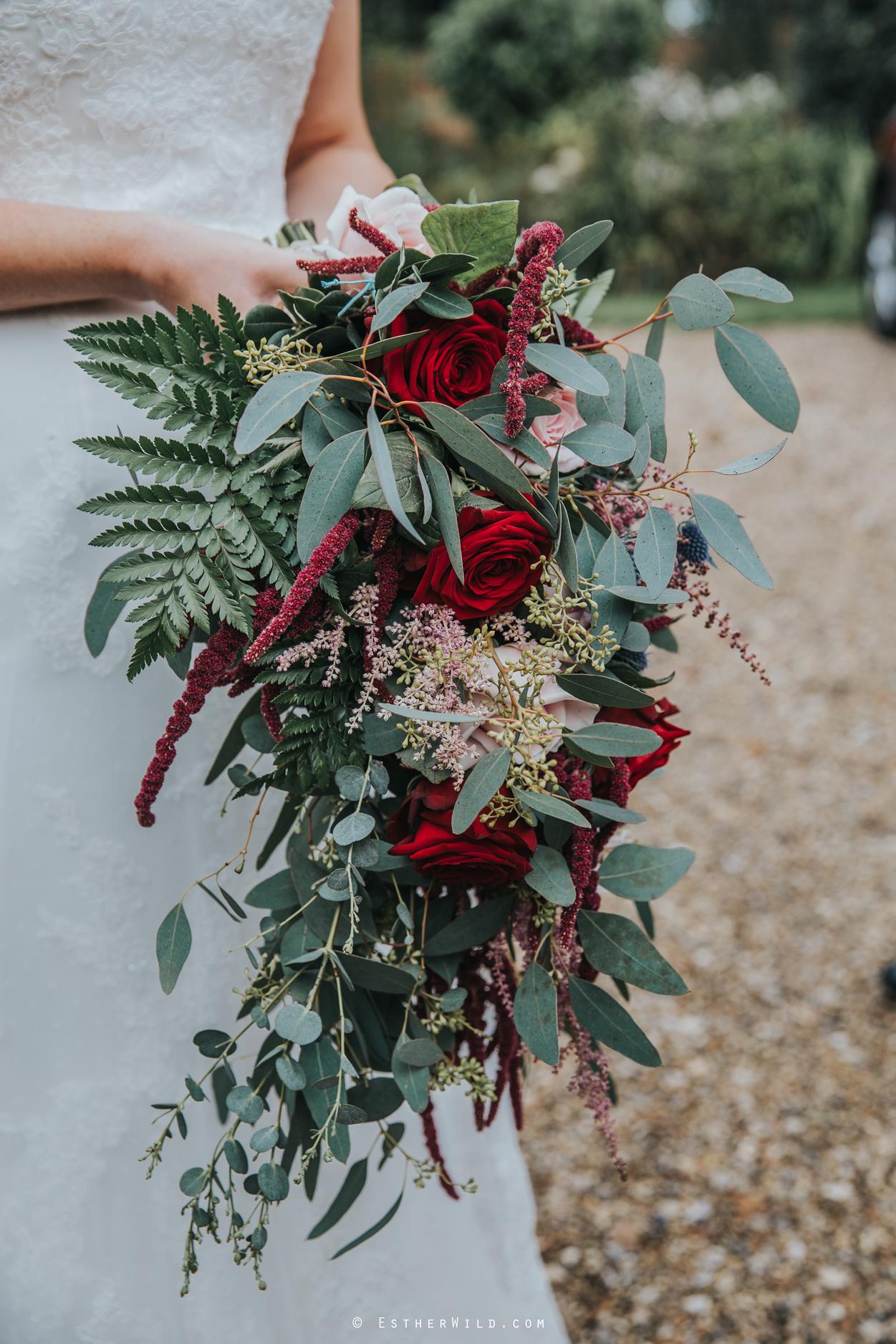 Reading_Room_Weddings_Alby_Norwich_Photographer_Esther_Wild_IMG_0742.jpg