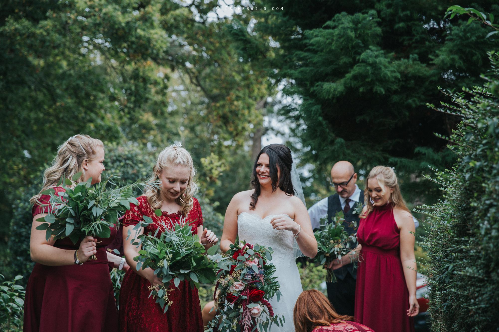 Reading_Room_Weddings_Alby_Norwich_Photographer_Esther_Wild_IMG_0802.jpg