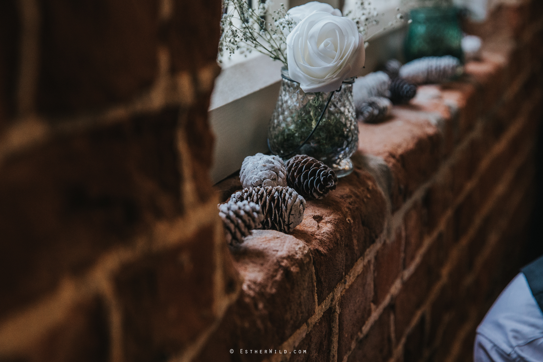 Reading_Room_Weddings_Alby_Norwich_Photographer_Esther_Wild_IMG_1035.jpg