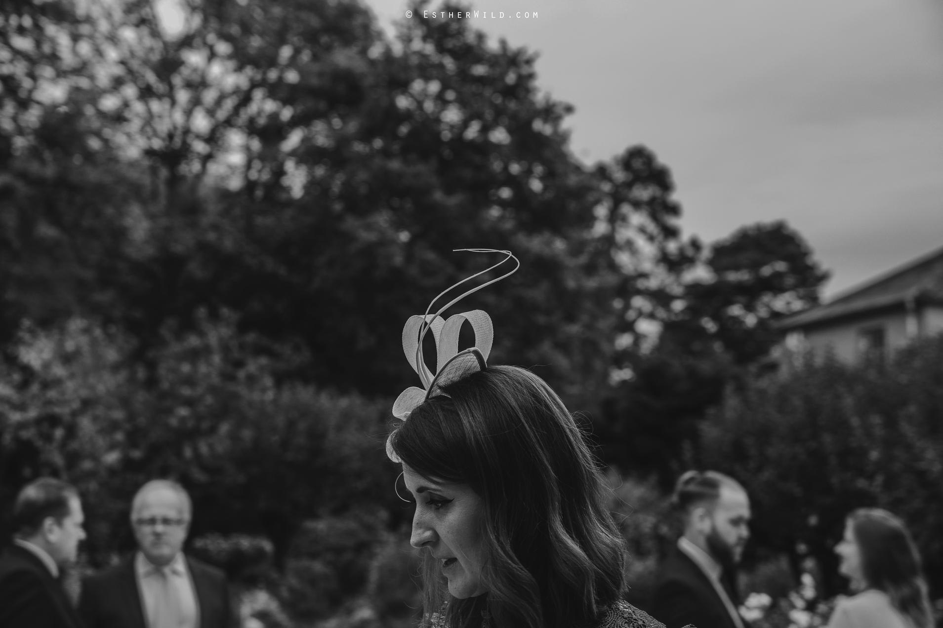 Reading_Room_Weddings_Alby_Norwich_Photographer_Esther_Wild_IMG_1573-1.jpg