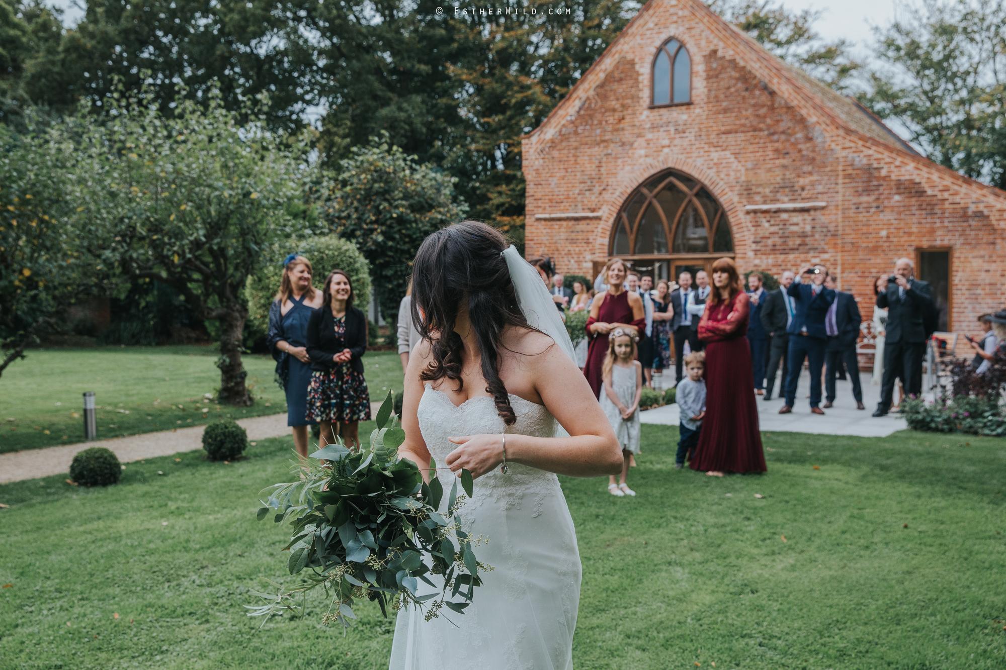 Reading_Room_Weddings_Alby_Norwich_Photographer_Esther_Wild_IMG_1613.jpg