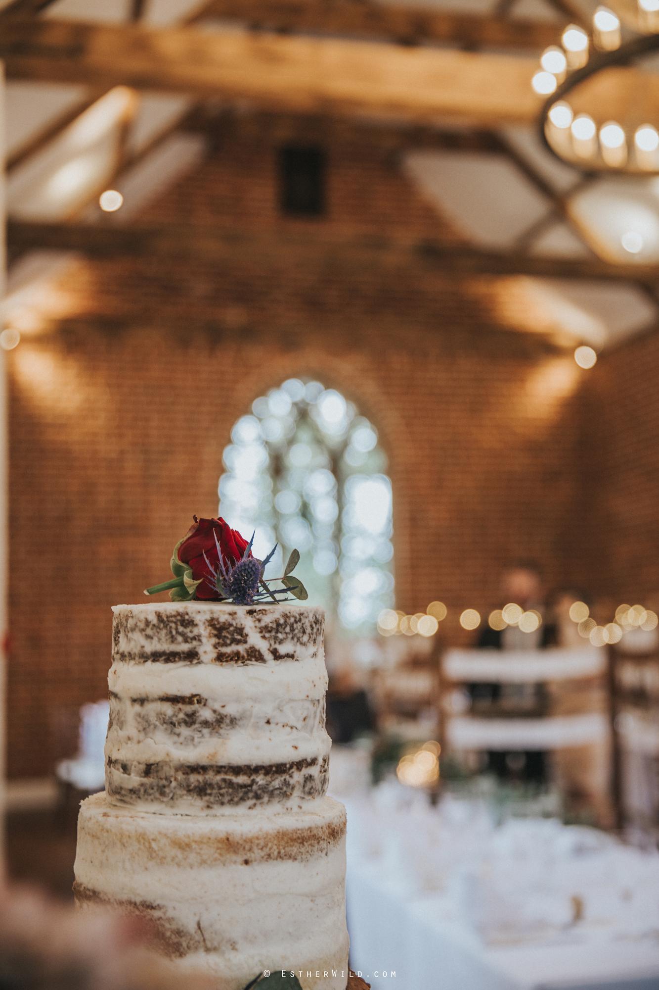 Reading_Room_Weddings_Alby_Norwich_Photographer_Esther_Wild_IMG_1703.jpg