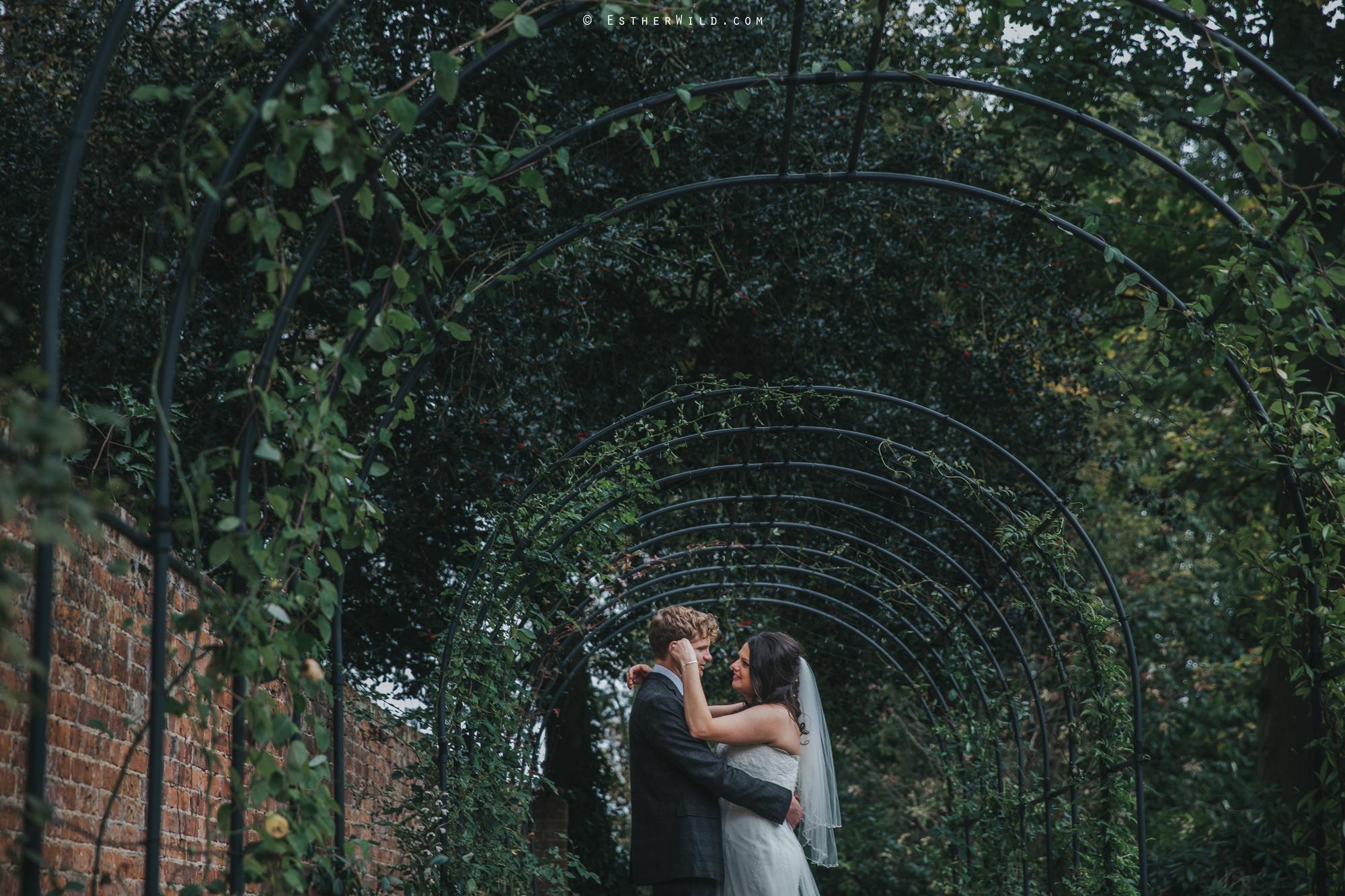 Reading_Room_Weddings_Alby_Norwich_Photographer_Esther_Wild_IMG_1775.jpg
