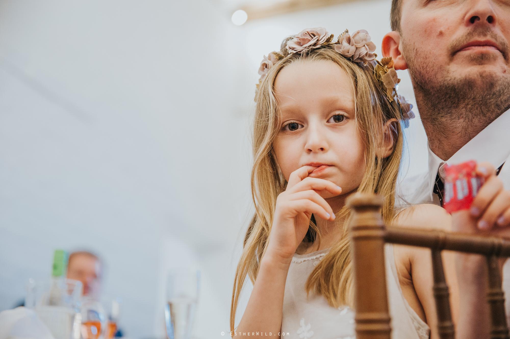 Reading_Room_Weddings_Alby_Norwich_Photographer_Esther_Wild_IMG_2286.jpg