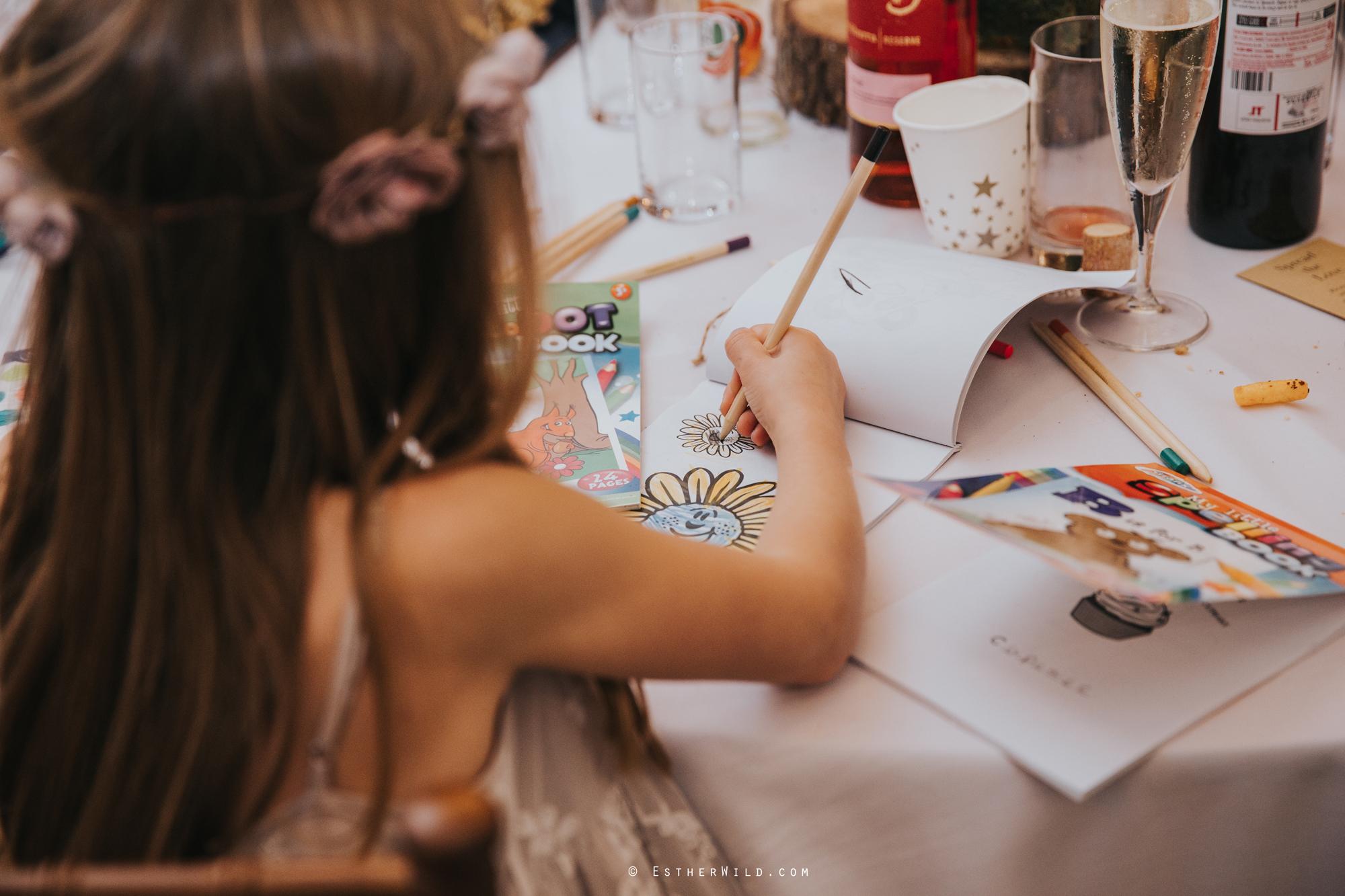 Reading_Room_Weddings_Alby_Norwich_Photographer_Esther_Wild_IMG_2557.jpg