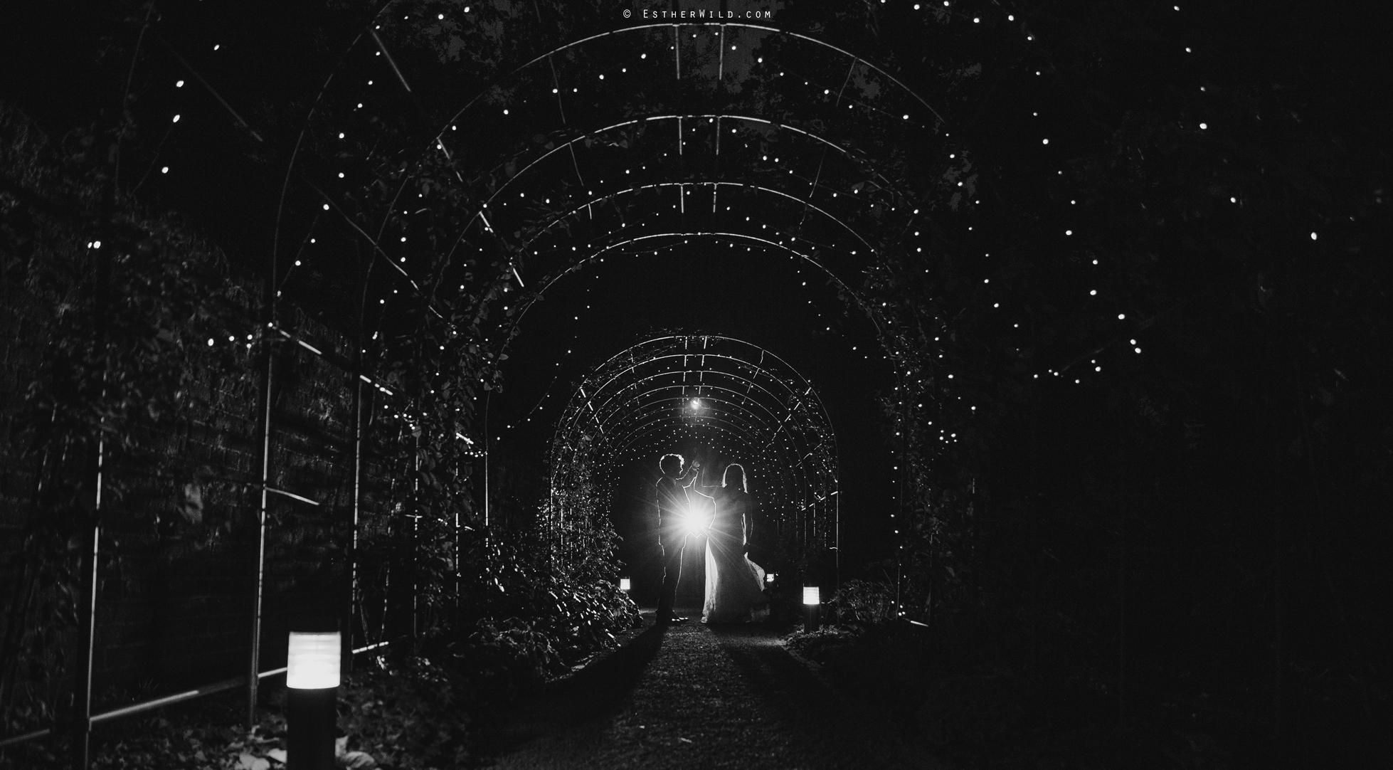 Reading_Room_Weddings_Alby_Norwich_Photographer_Esther_Wild_IMG_2871.jpg