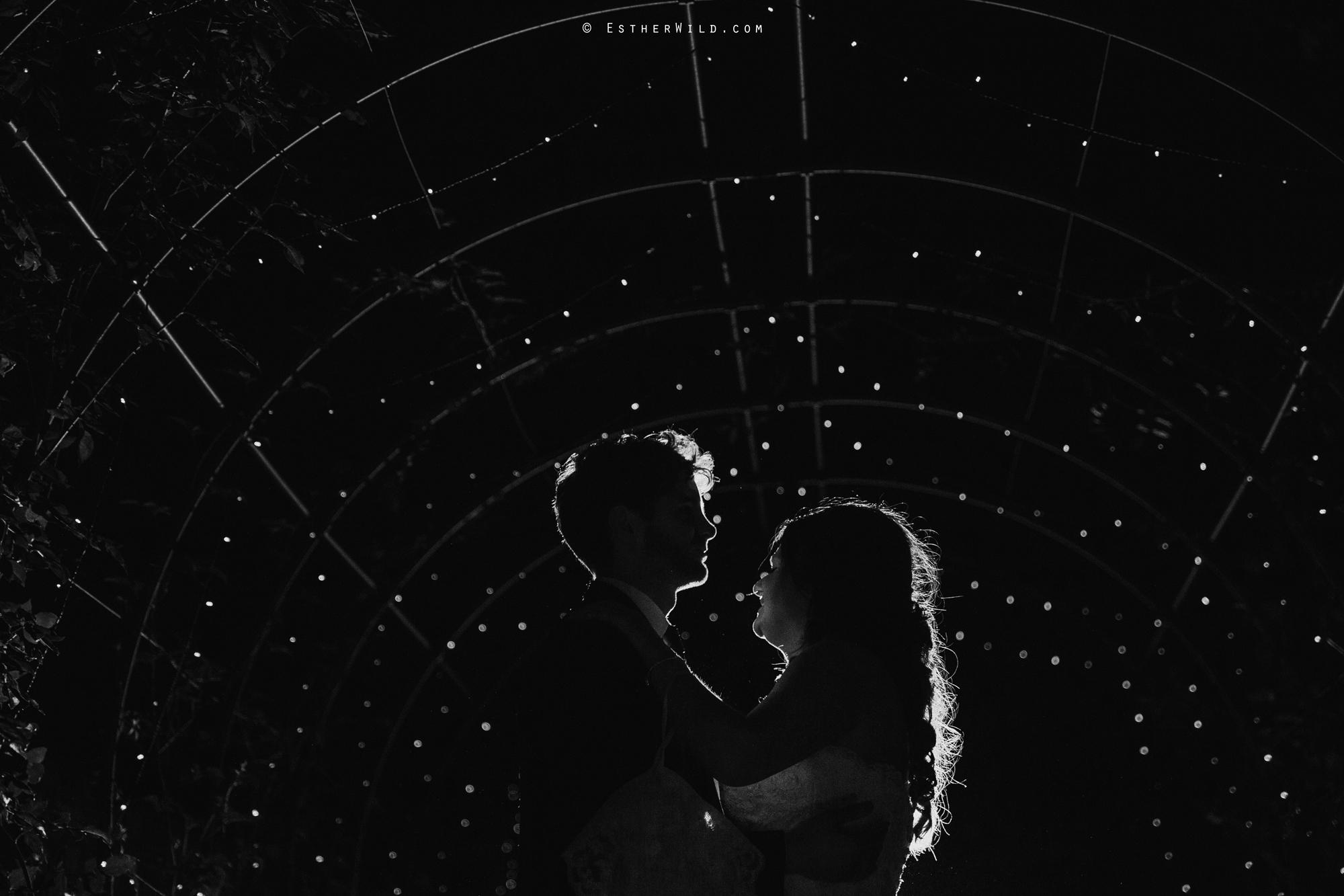 Reading_Room_Weddings_Alby_Norwich_Photographer_Esther_Wild_IMG_2924-1.jpg