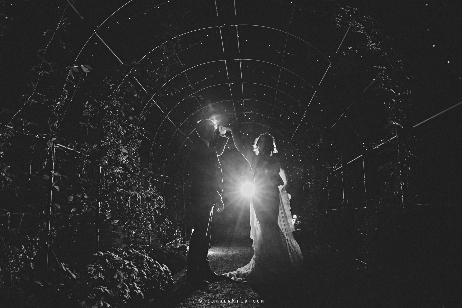 Reading_Room_Weddings_Alby_Norwich_Photographer_Esther_Wild_IMG_2947-1.jpg