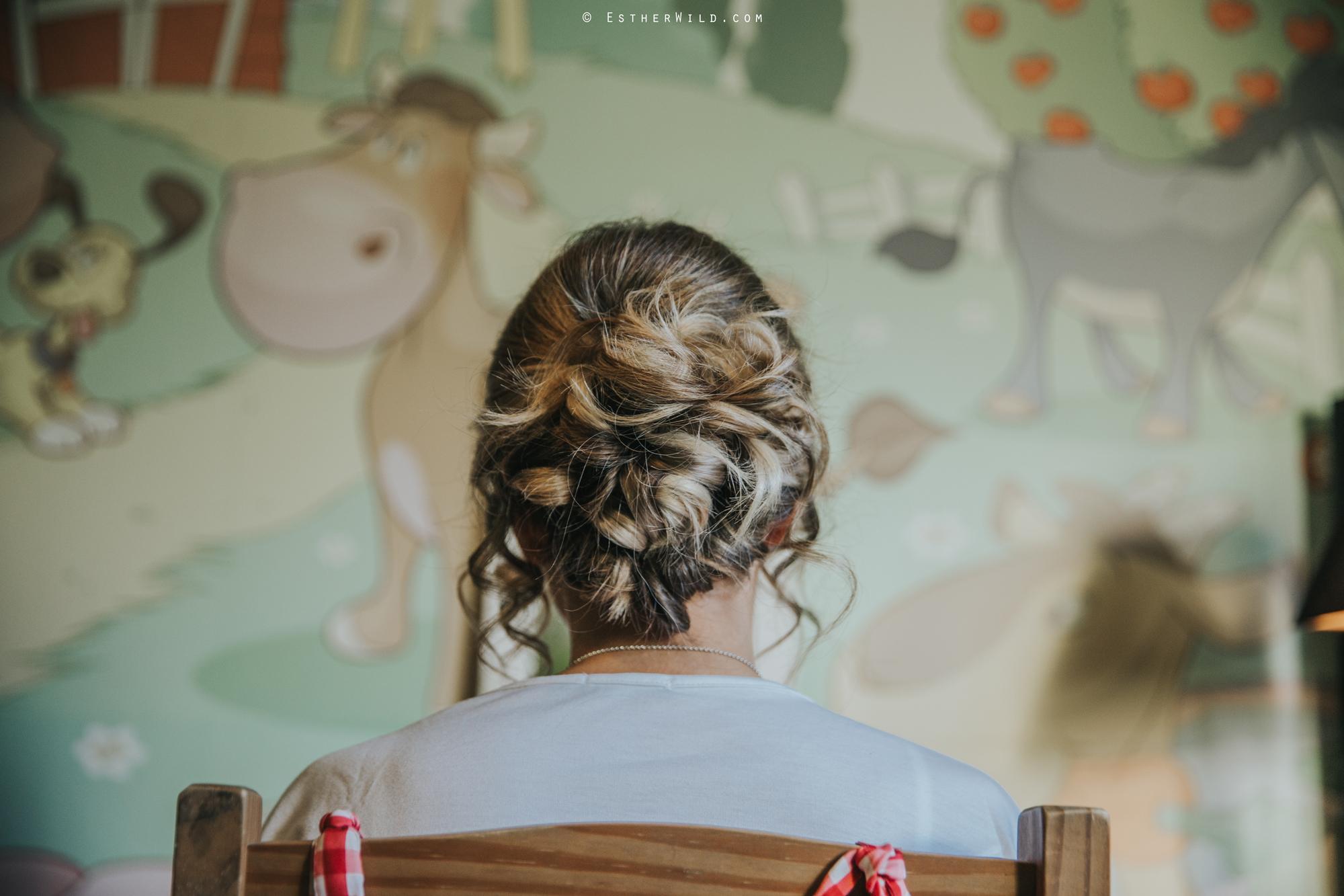 Wedding_Photography_Diss_Gawdy_Hall_Redenhall_Church_Norfolk_Winter_Esther_Wild_Copyright_IMG_0292.jpg