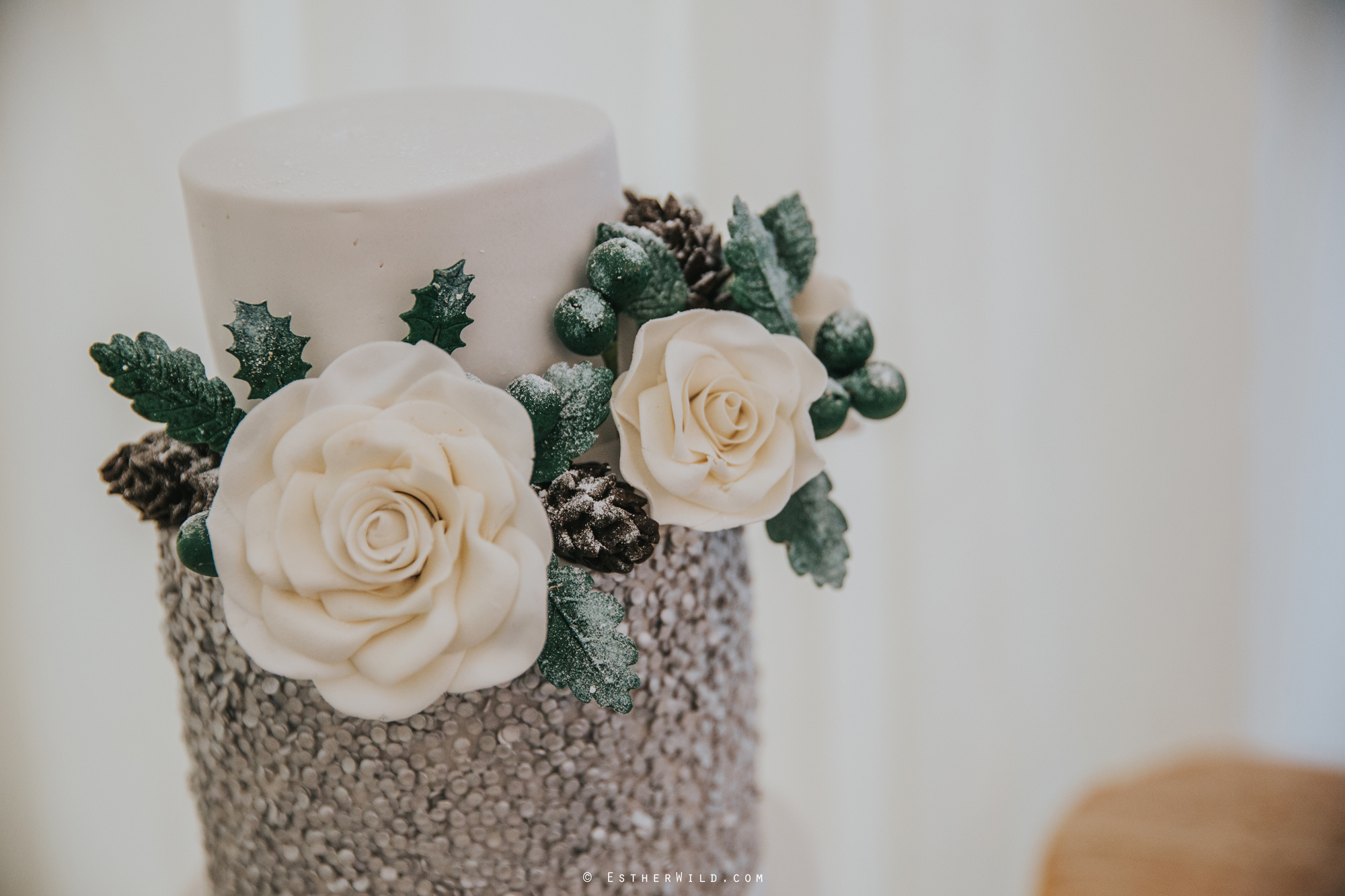 Wedding_Photography_Diss_Gawdy_Hall_Redenhall_Church_Norfolk_Winter_Esther_Wild_Copyright_IMG_1593.jpg
