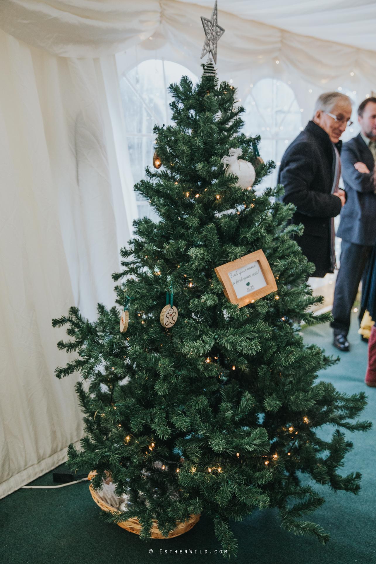 Wedding_Photography_Diss_Gawdy_Hall_Redenhall_Church_Norfolk_Winter_Esther_Wild_Copyright_IMG_1624.jpg