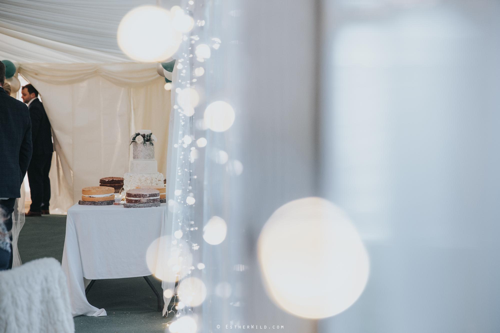 Wedding_Photography_Diss_Gawdy_Hall_Redenhall_Church_Norfolk_Winter_Esther_Wild_Copyright_IMG_2019.jpg