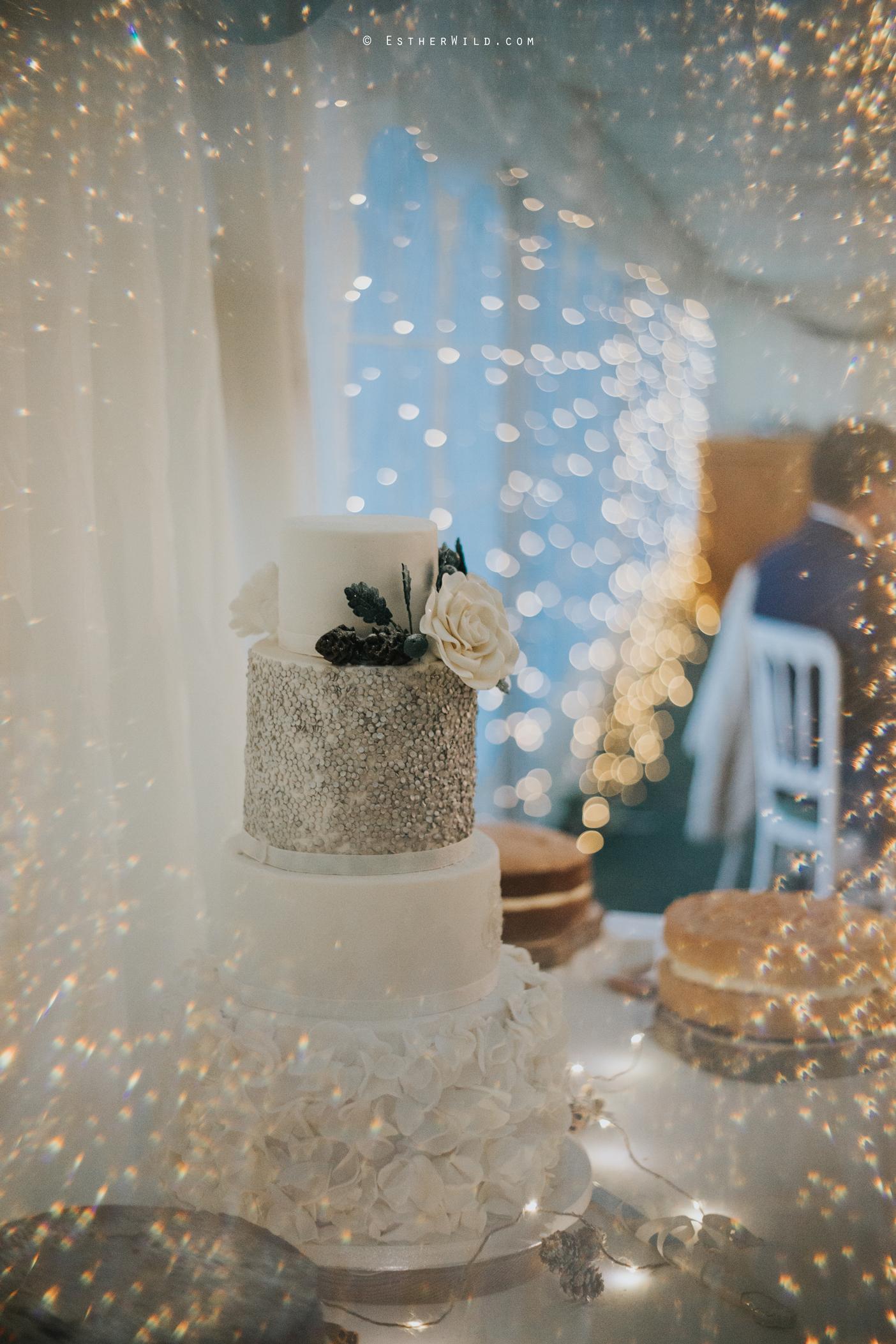 Wedding_Photography_Diss_Gawdy_Hall_Redenhall_Church_Norfolk_Winter_Esther_Wild_Copyright_IMG_2021_IMGL1156.jpg