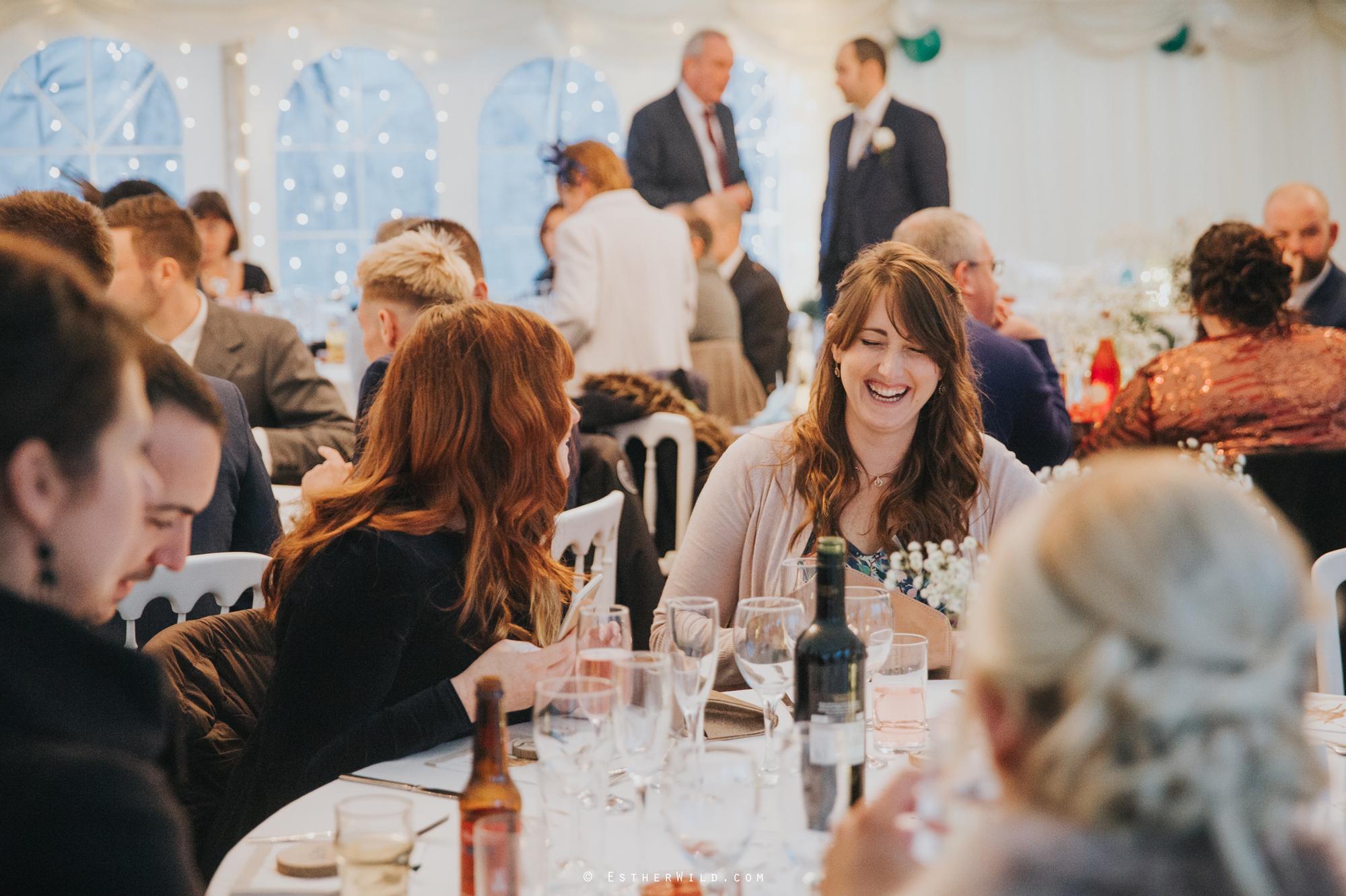 Wedding_Photography_Diss_Gawdy_Hall_Redenhall_Church_Norfolk_Winter_Esther_Wild_Copyright_IMG_2030.jpg