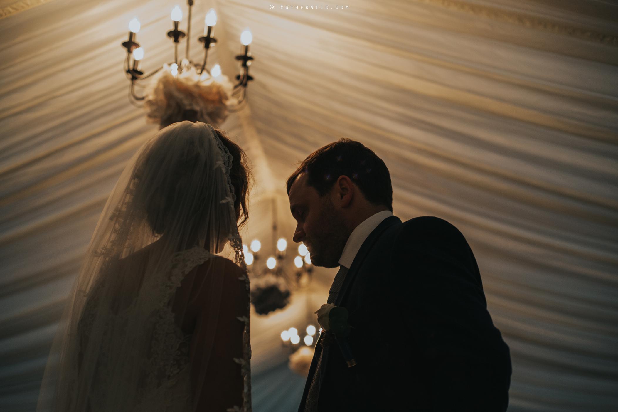 Wedding_Photography_Diss_Gawdy_Hall_Redenhall_Church_Norfolk_Winter_Esther_Wild_Copyright_IMG_2059_IMGL1239.jpg