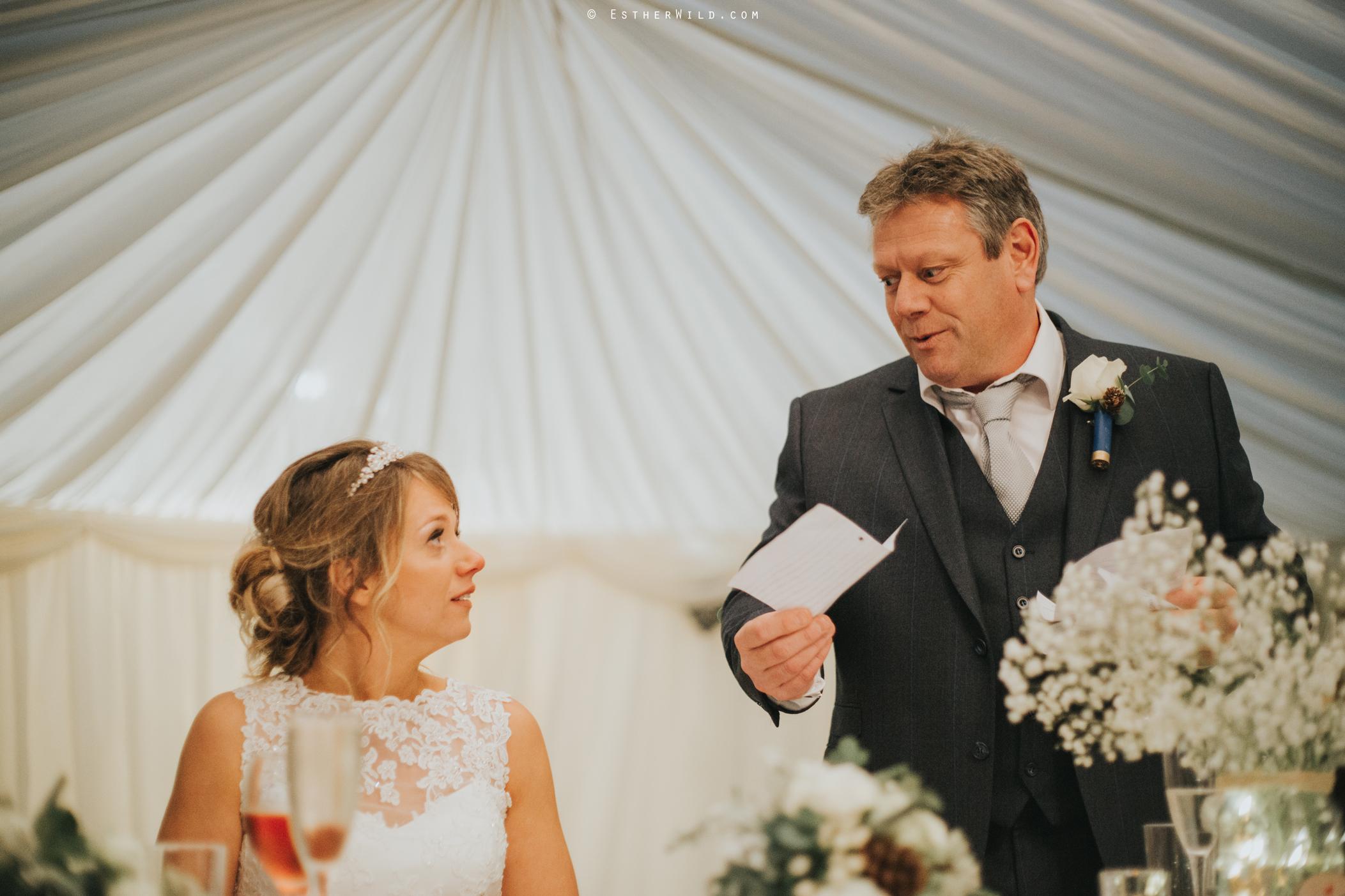 Wedding_Photography_Diss_Gawdy_Hall_Redenhall_Church_Norfolk_Winter_Esther_Wild_Copyright_IMG_2059_IMGL1340.jpg