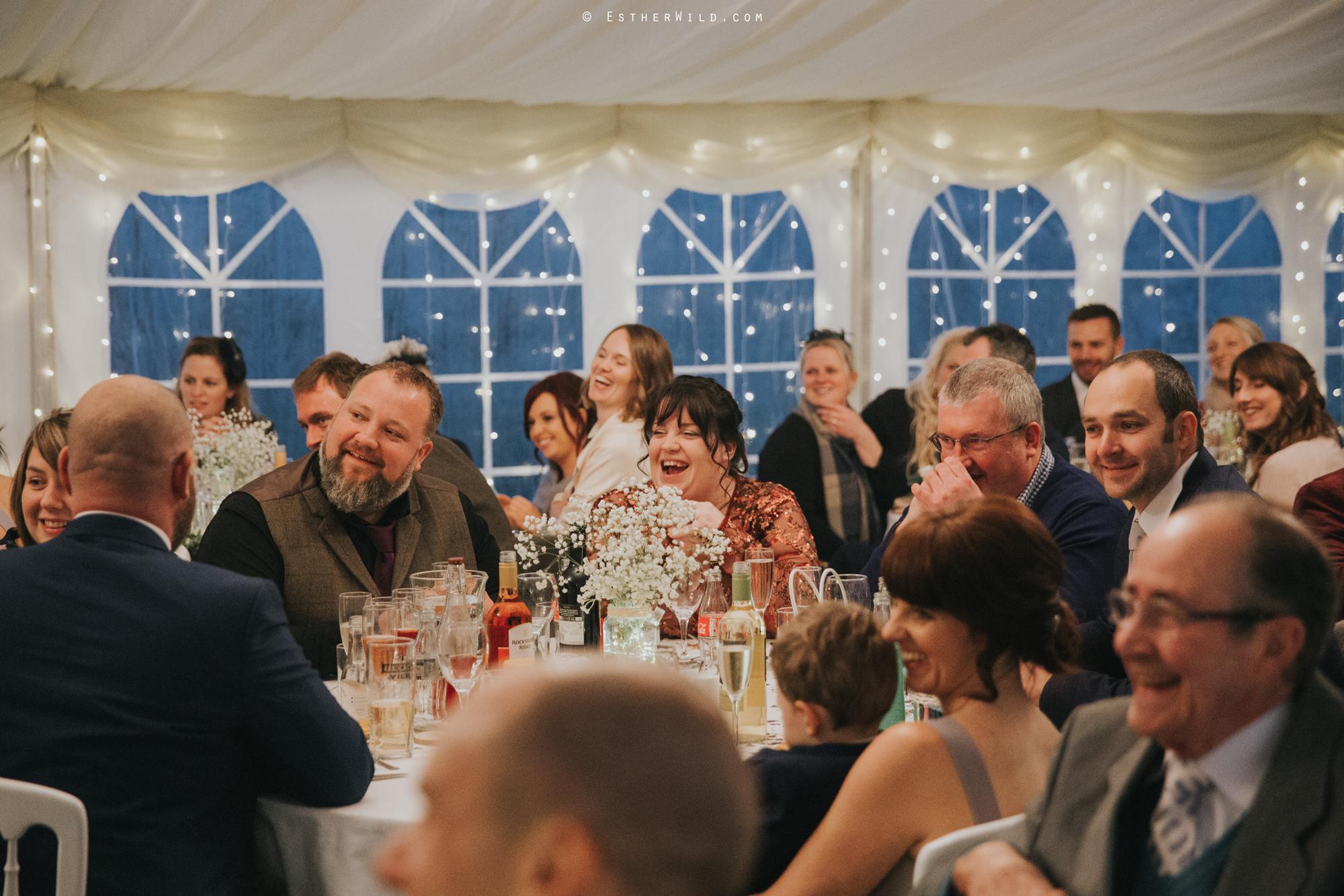 Wedding_Photography_Diss_Gawdy_Hall_Redenhall_Church_Norfolk_Winter_Esther_Wild_Copyright_IMG_2070.jpg