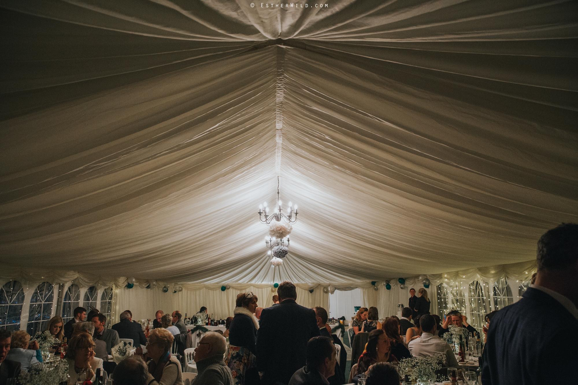 Wedding_Photography_Diss_Gawdy_Hall_Redenhall_Church_Norfolk_Winter_Esther_Wild_Copyright_IMG_2167.jpg