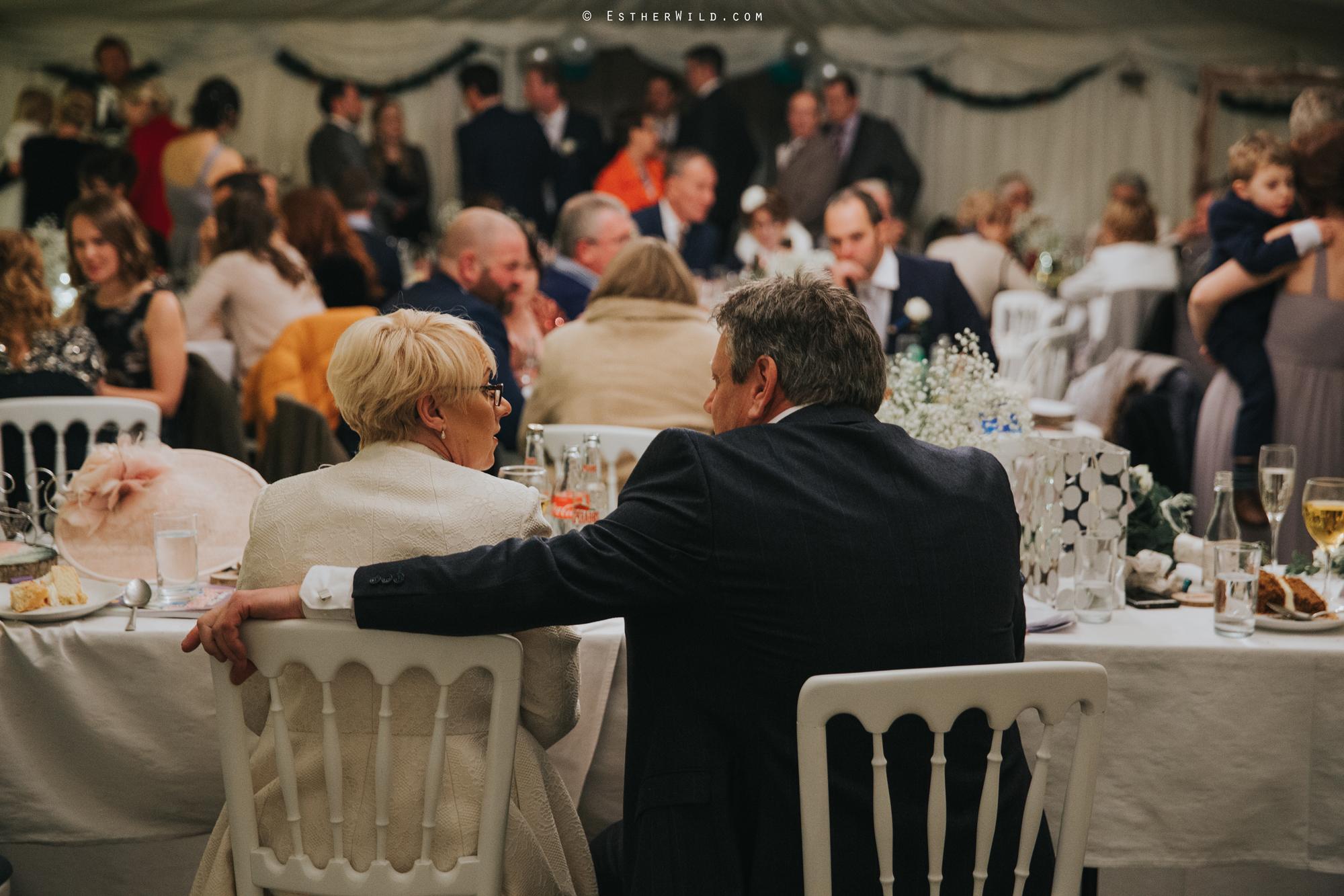Wedding_Photography_Diss_Gawdy_Hall_Redenhall_Church_Norfolk_Winter_Esther_Wild_Copyright_IMG_2201.jpg